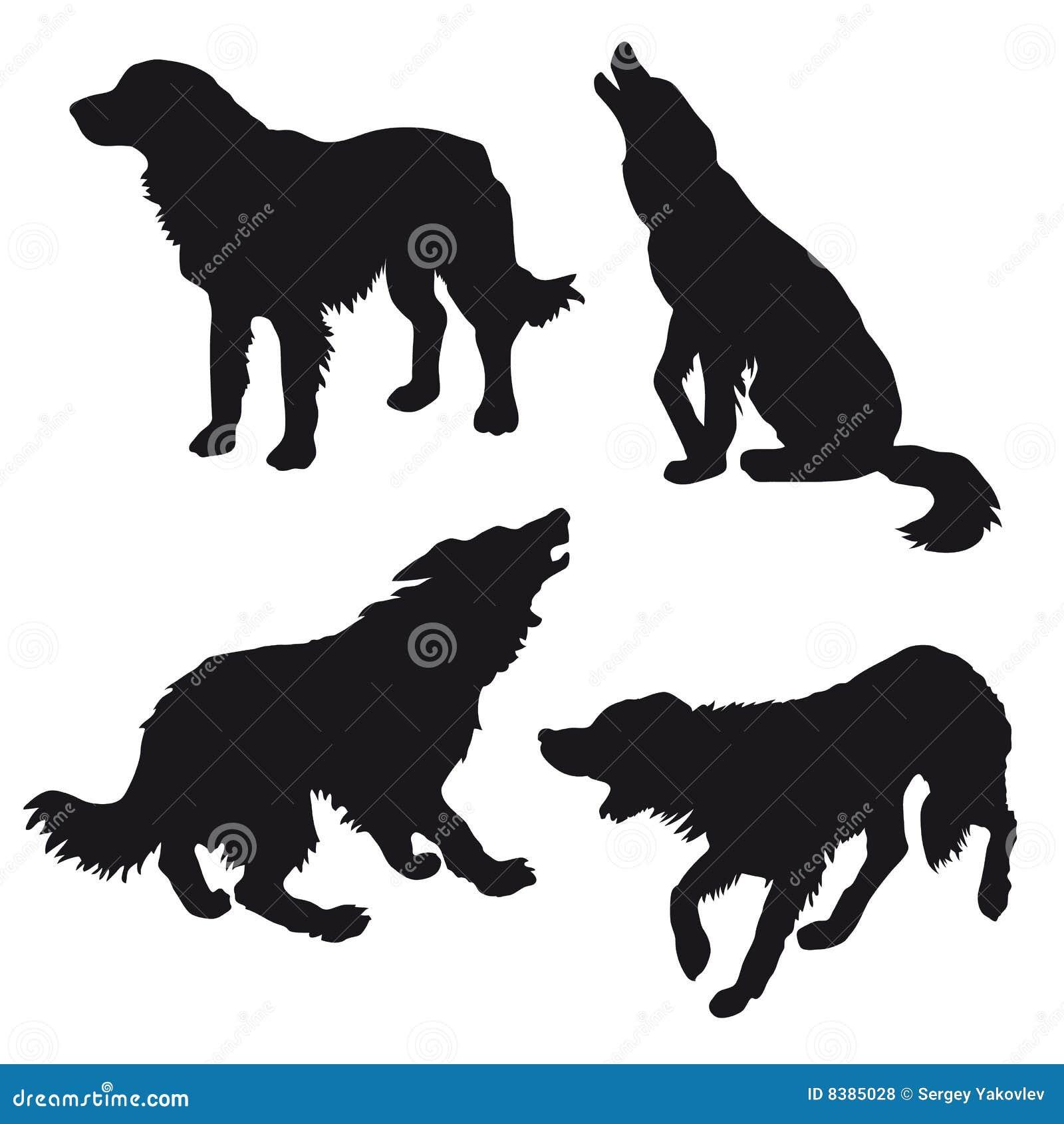 Silhueta do cão