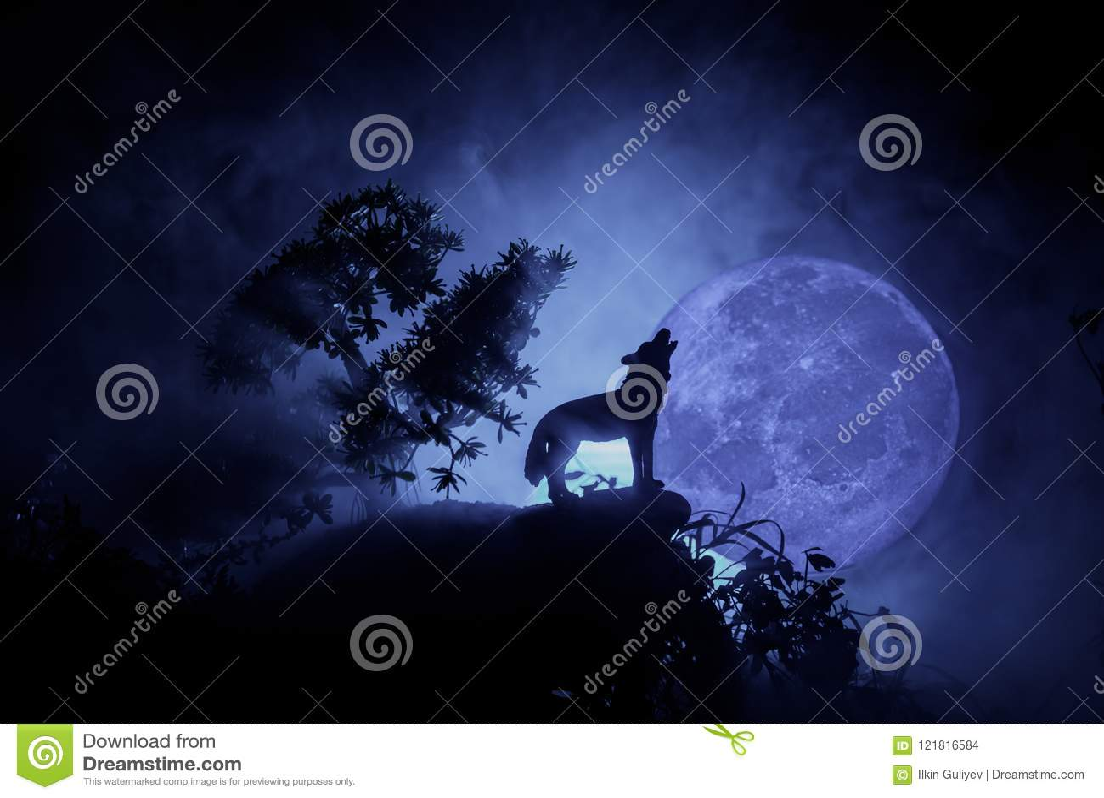 Silhueta do lobo do urro contra o fundo escuro e Lua cheia ou lobo nevoento tonificado na silhueta que urram ao máximo a lua hall