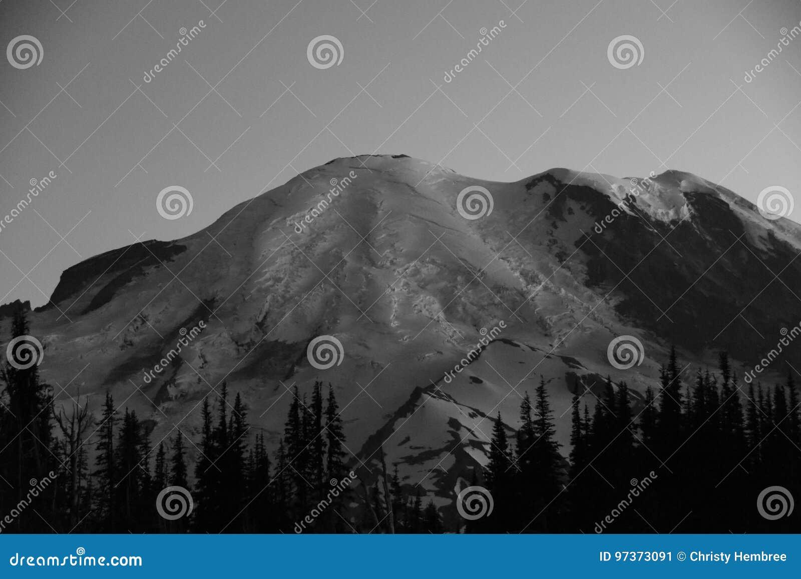 Silhueta do nascer do sol: Mt Rainier Head Shot Grey Tones, montagem Rainier National Park