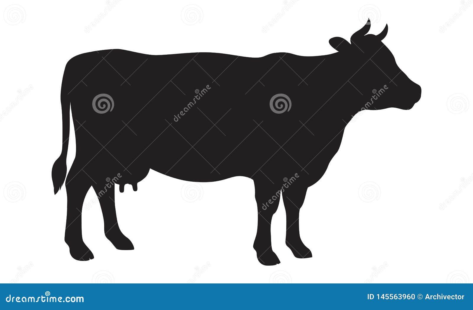 Silhueta do preto da vaca do sinal Animais de explora??o agr?cola