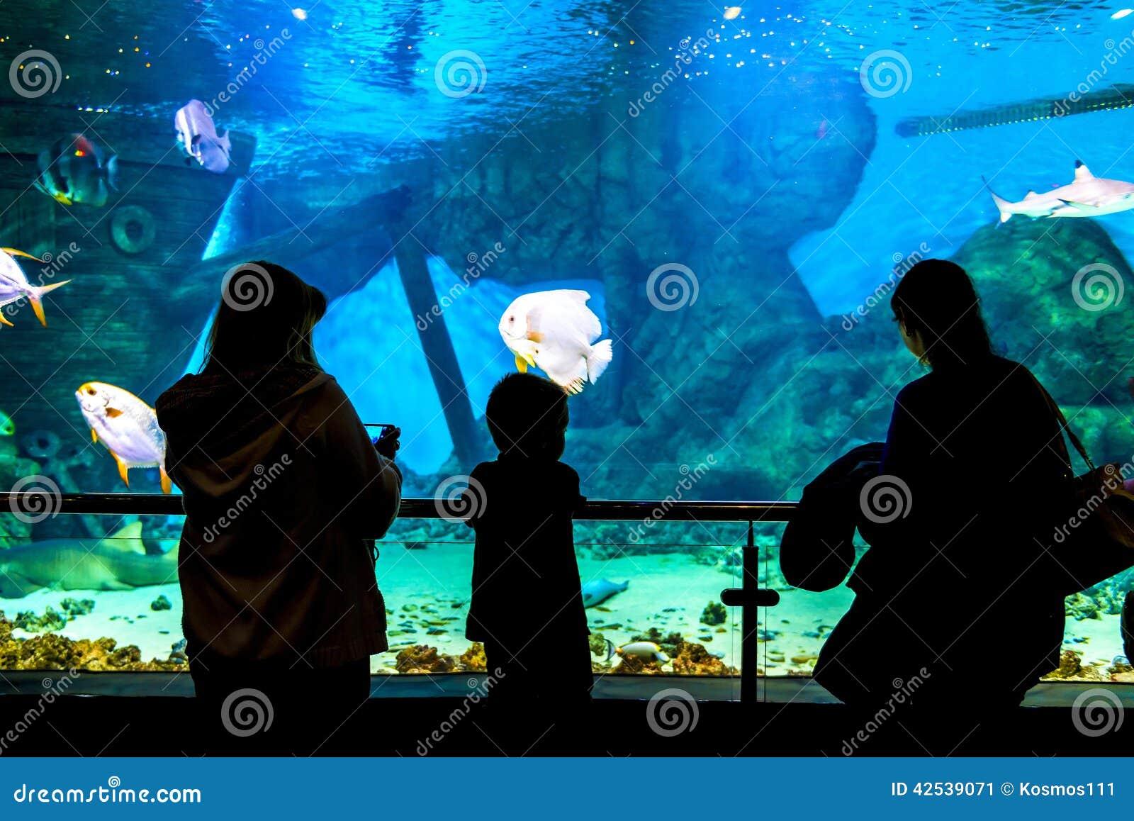 Silhuetas dos povos no Oceanarium