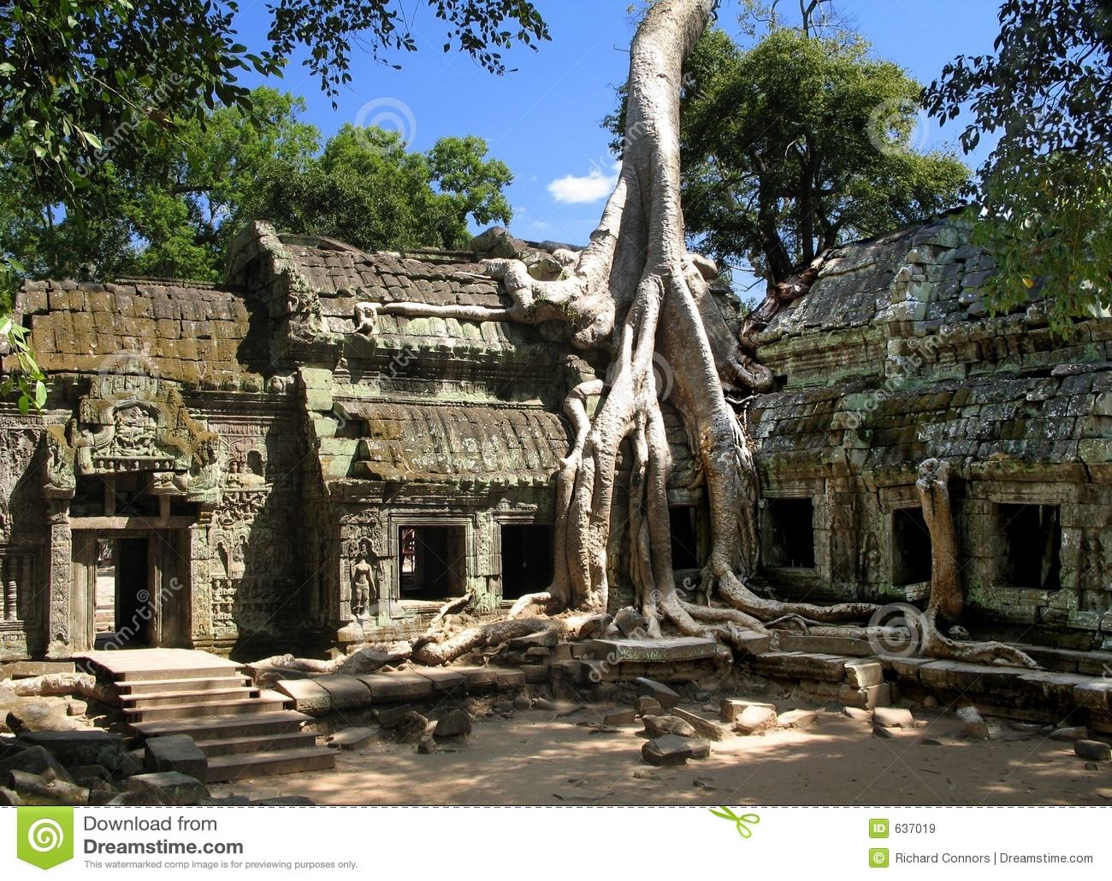 A silk-cotton tree consumes the ancient ruins of Ta Prohm, Angkor, Cambodia