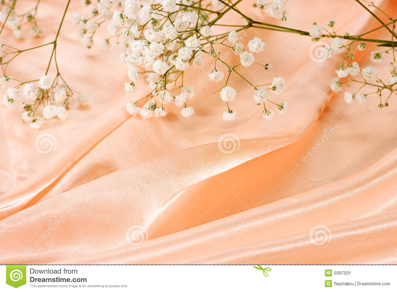 36 130 background color peach photos free royalty free stock photos from dreamstime dreamstime com