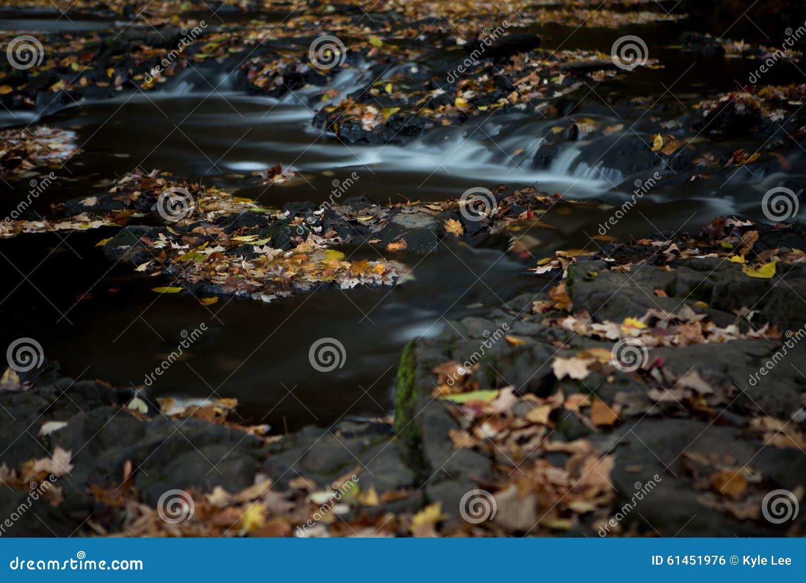 Silky Stream in Autumn