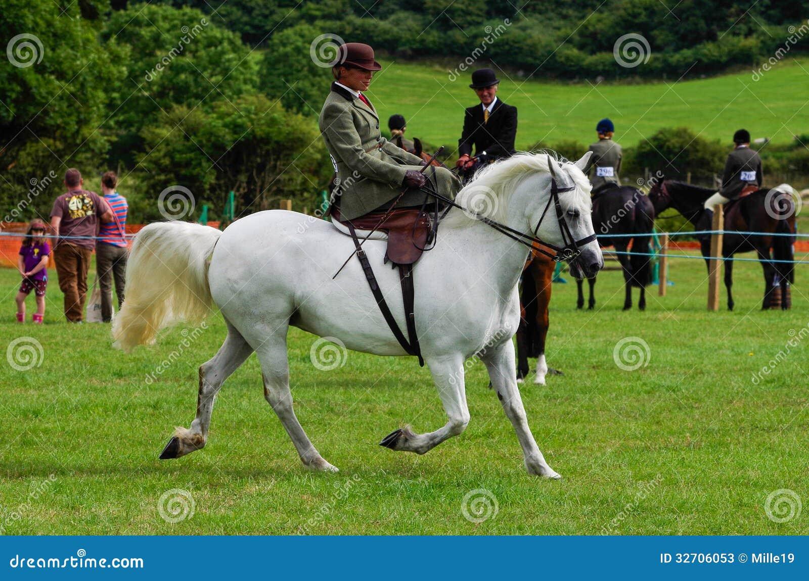 Silla de montar del lado del montar a caballo de la se ora foto de archivo editorial - Silla montar caballo ...