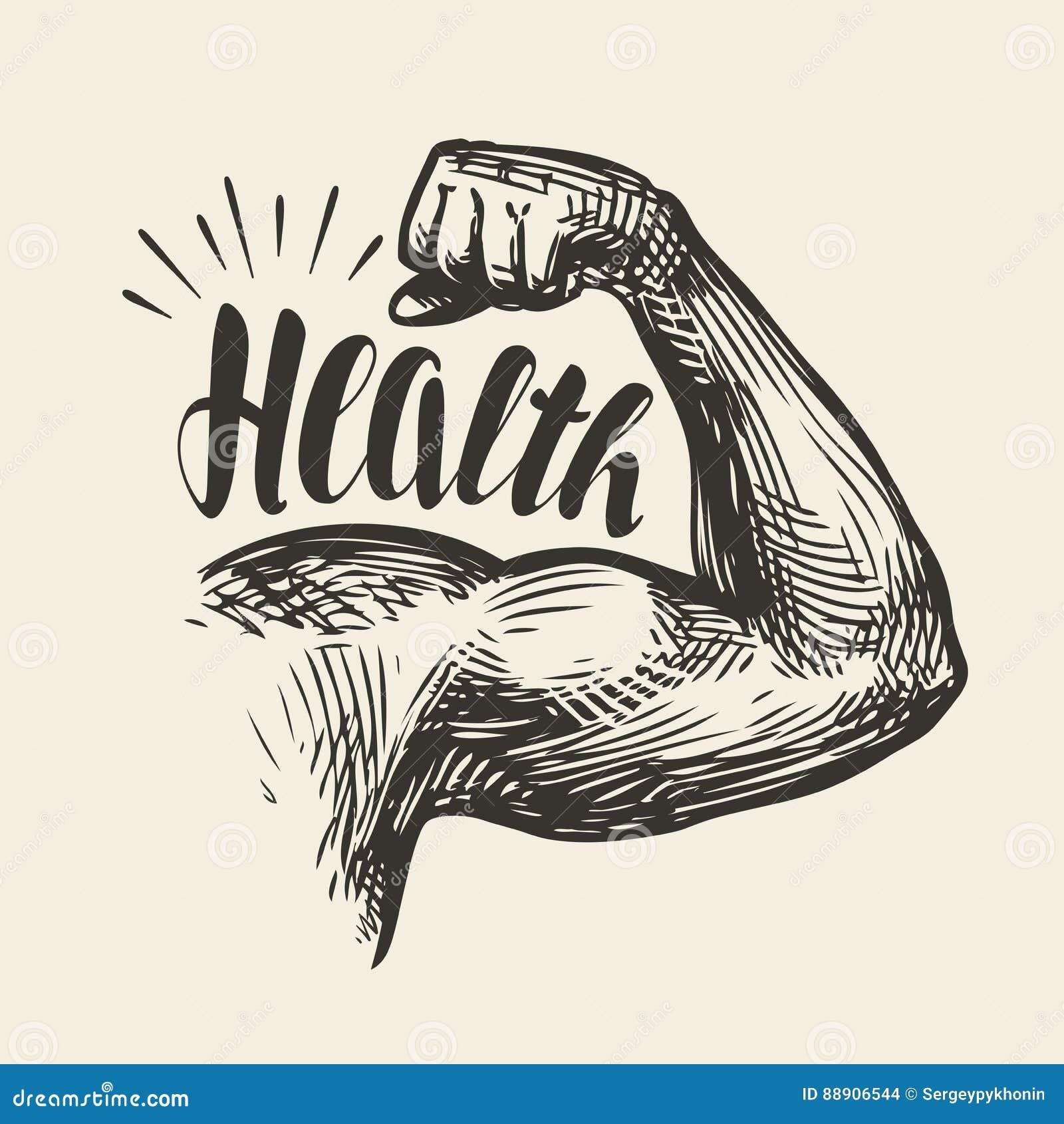 Silnej ręki mięśnie, bicepsy Gym, bodybuilding zdrowia nakreślenie Literowanie, wektorowa ilustracja