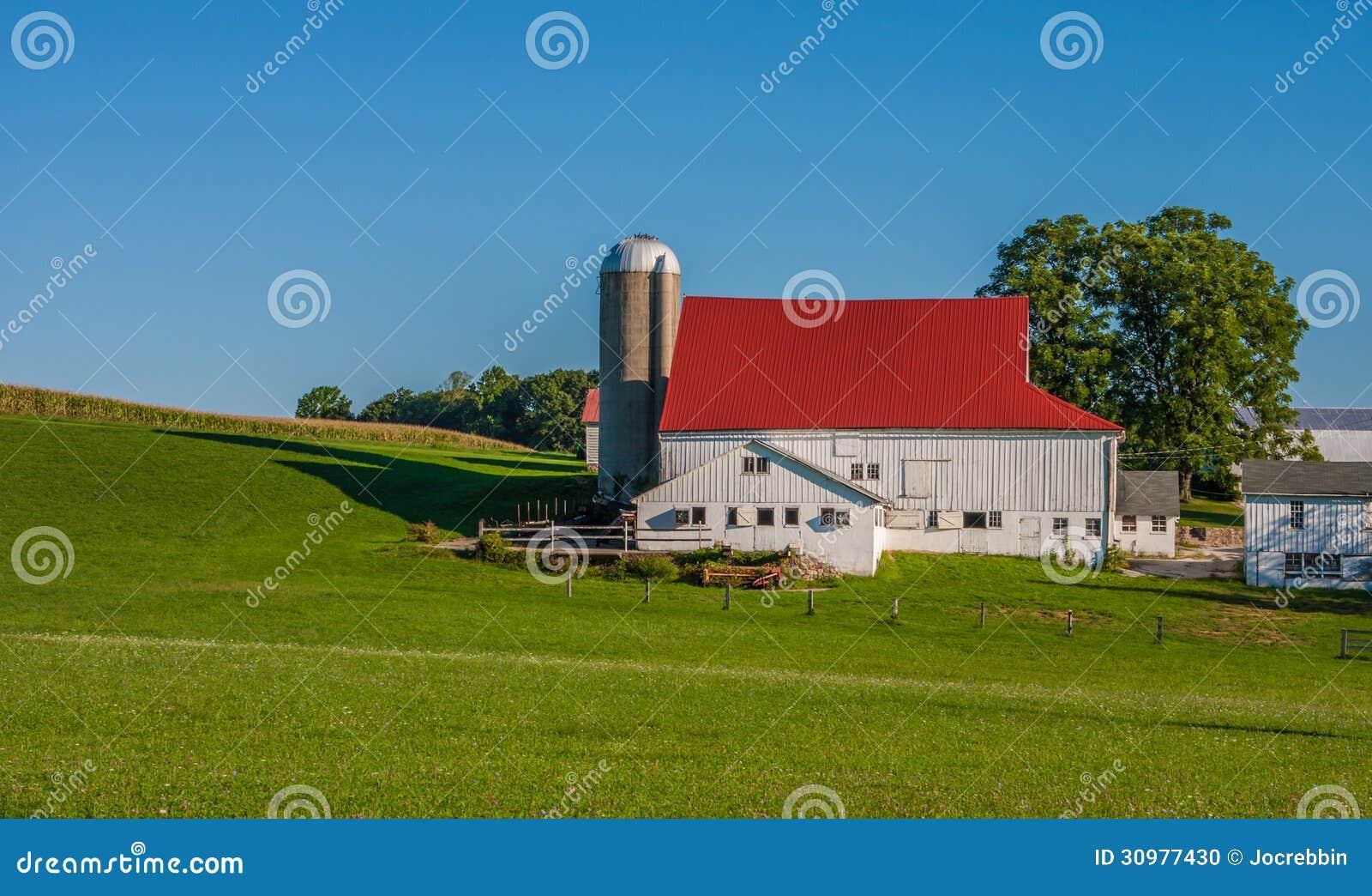 Silo e celeiro com o telhado vermelho perto do prado verde
