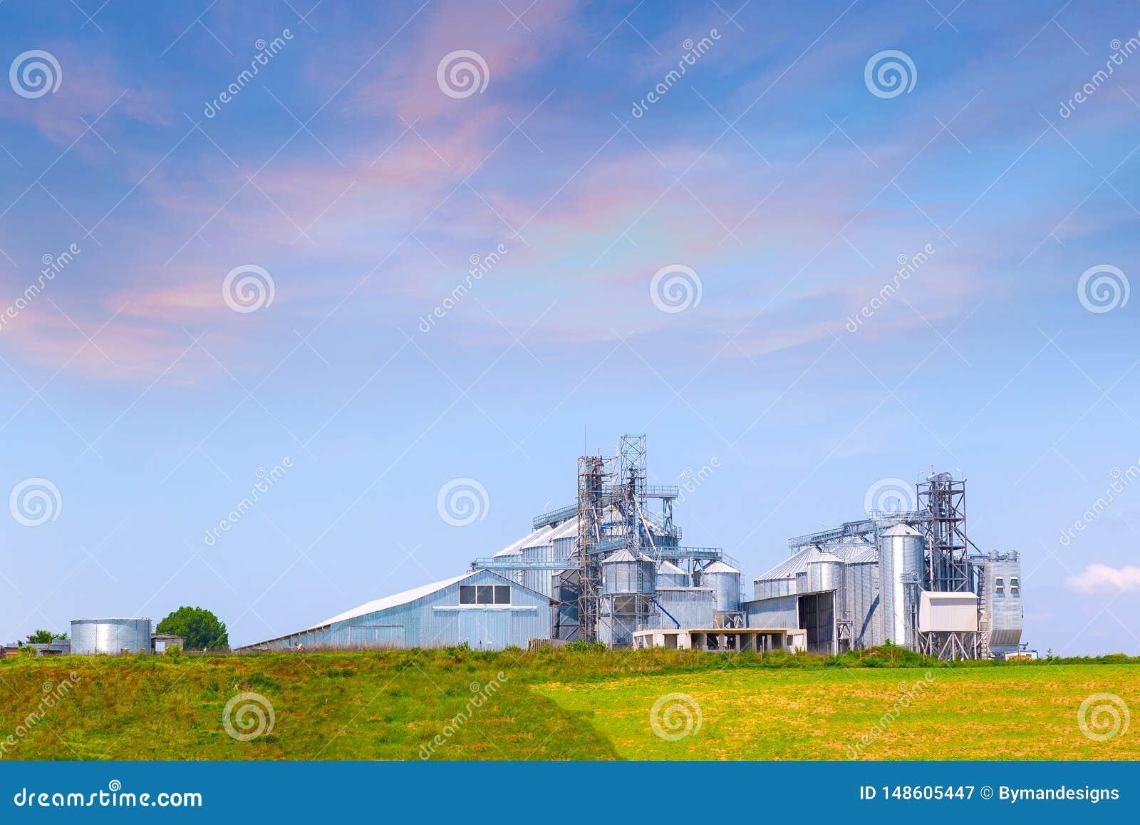 Silos agricoles pour le stockage et le séchage des grains, blé, maïs, soja, tournesol