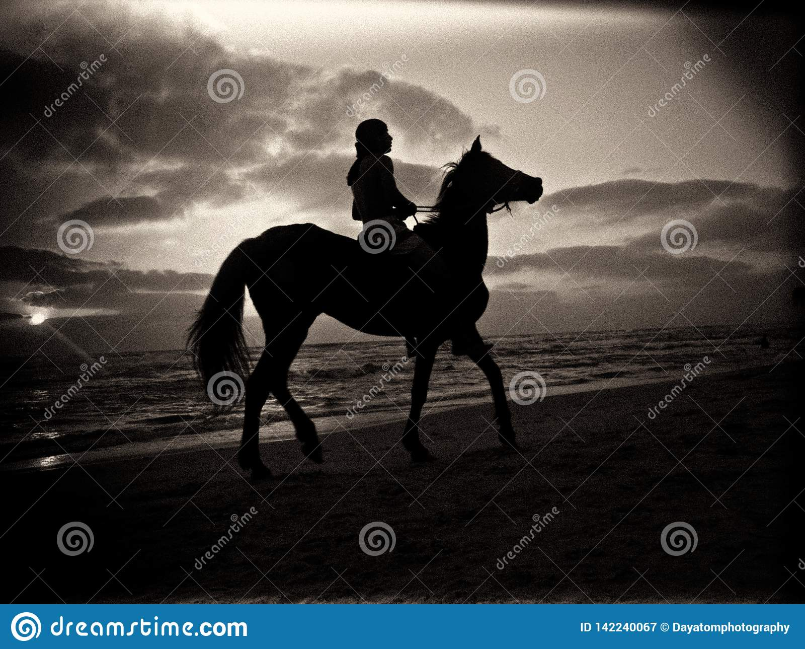 Silueta blanco y negro de un hombre que monta un caballo en una playa arenosa debajo de un cielo nublado durante puesta del sol