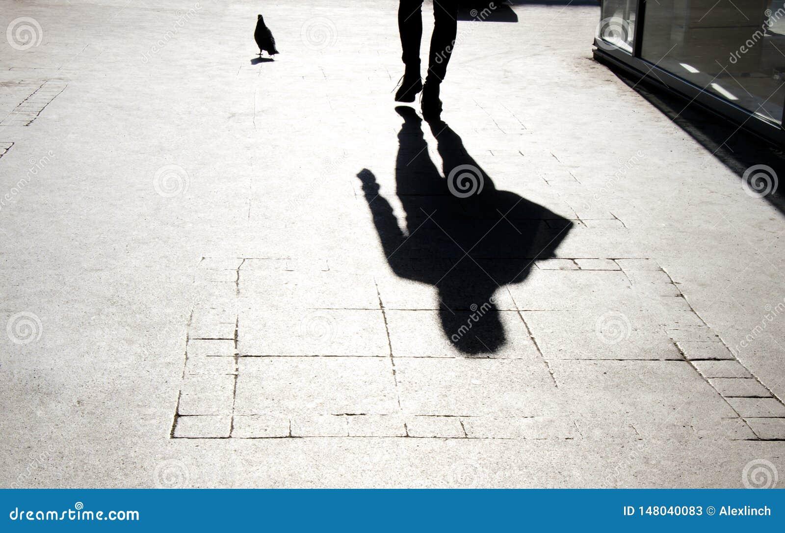 Silueta borrosa de la sombra de una persona y de una paloma