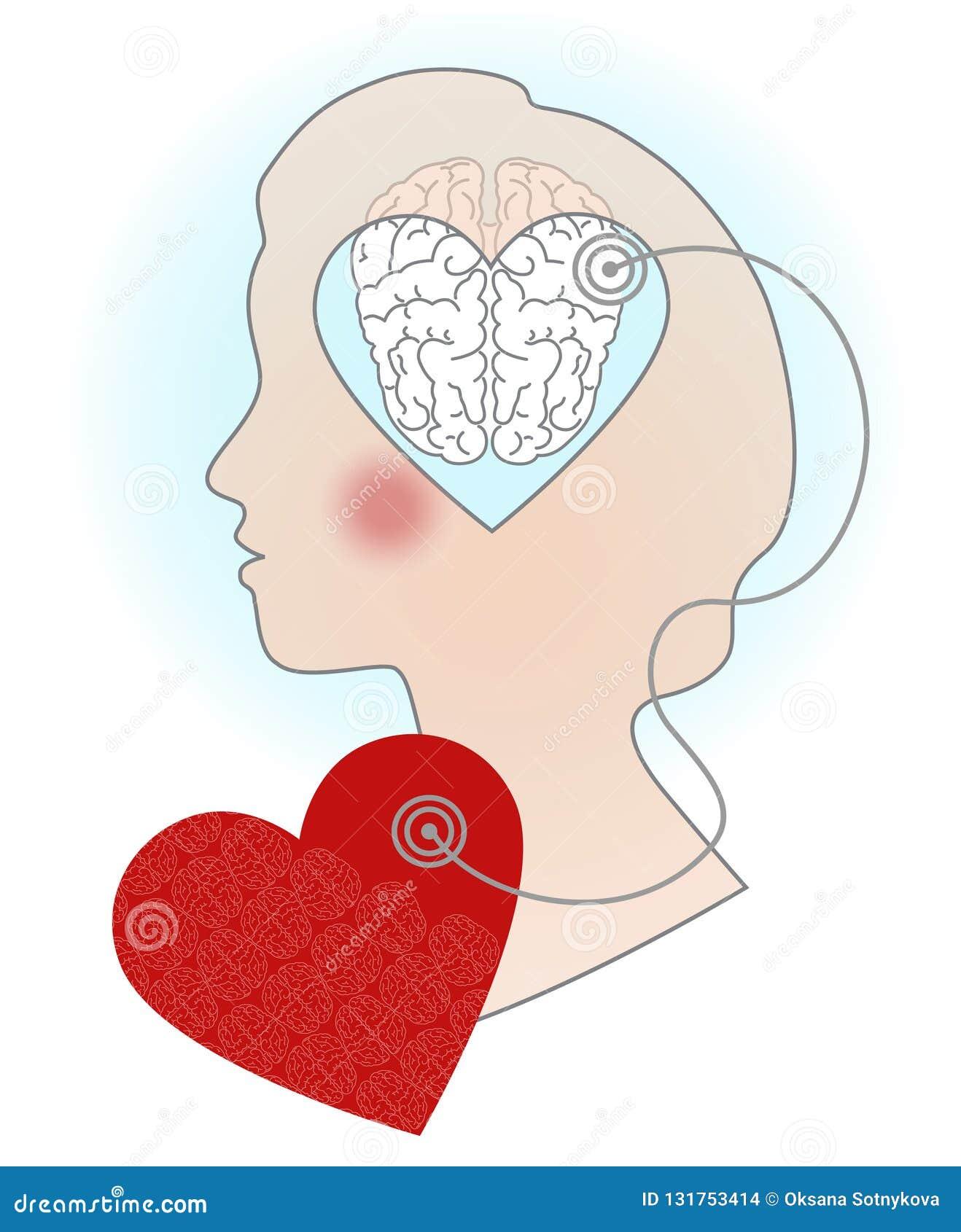 Silueta de la cabeza de una muchacha, un ejemplo de la relación del cerebro y corazón