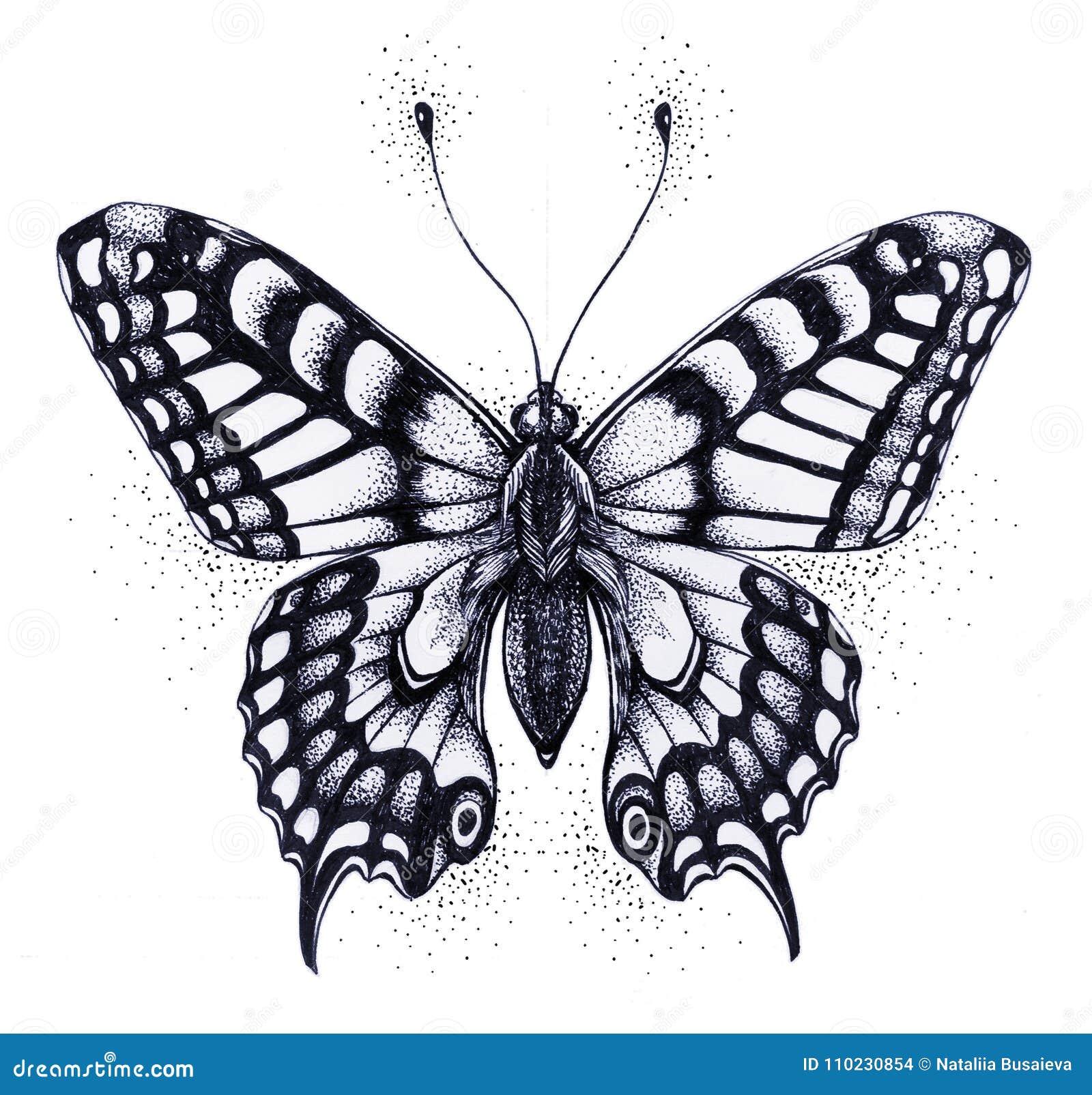 Silueta De La Mariposa Simbolo Del Alma De La Inmortalidad Del