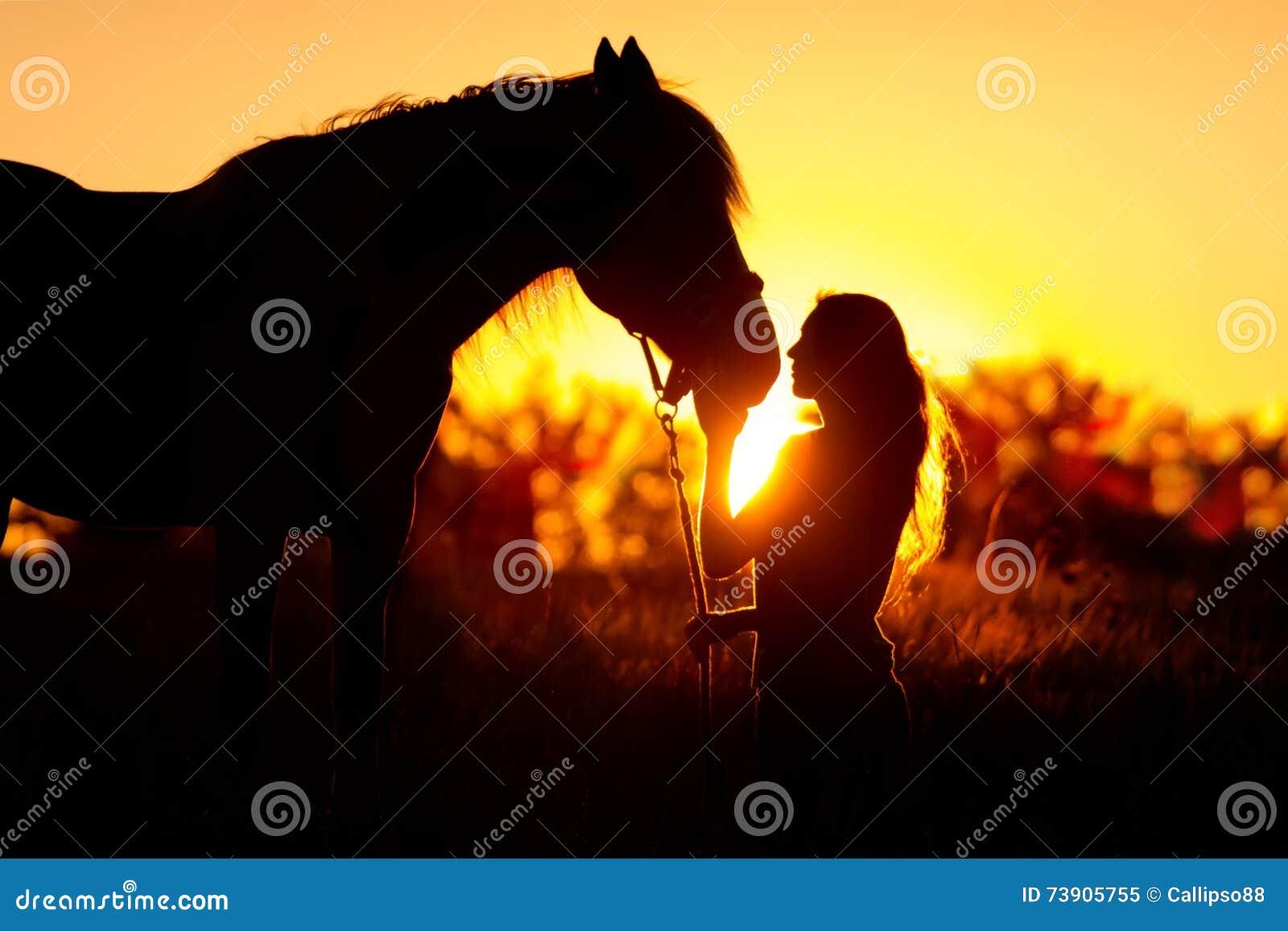 Silueta de la muchacha y del caballo