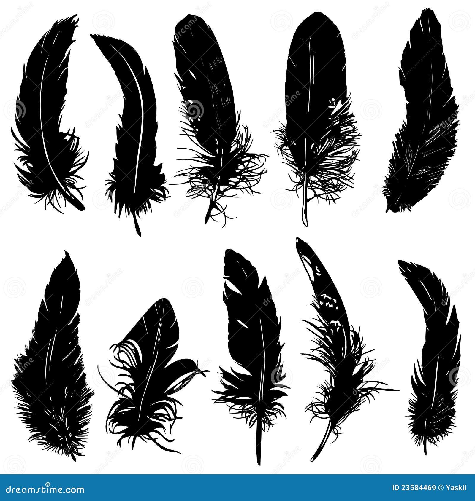 Plumas (Penachos; Penas) Eagle Silhouette Vector