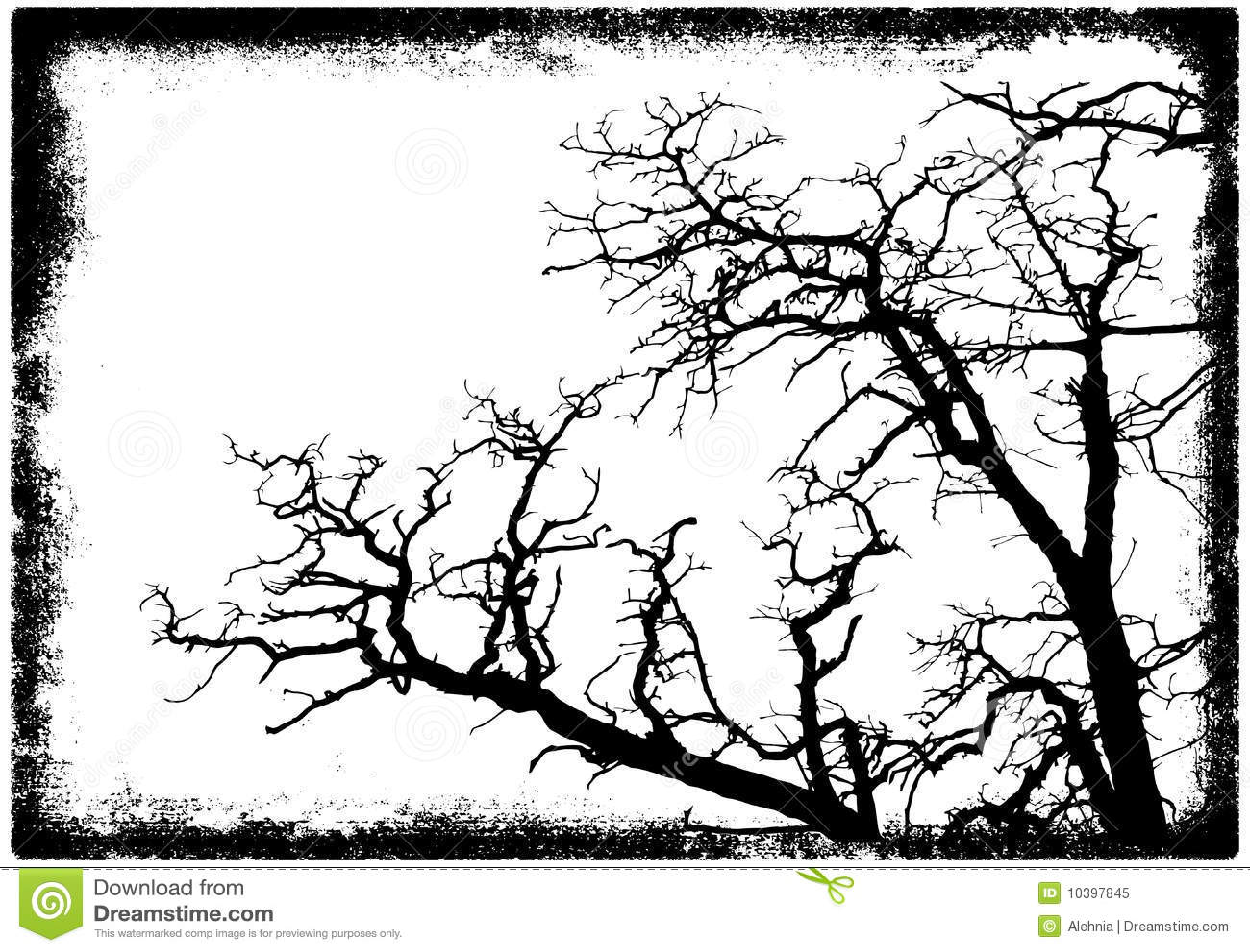 Silueta de las ramificaciones de árbol