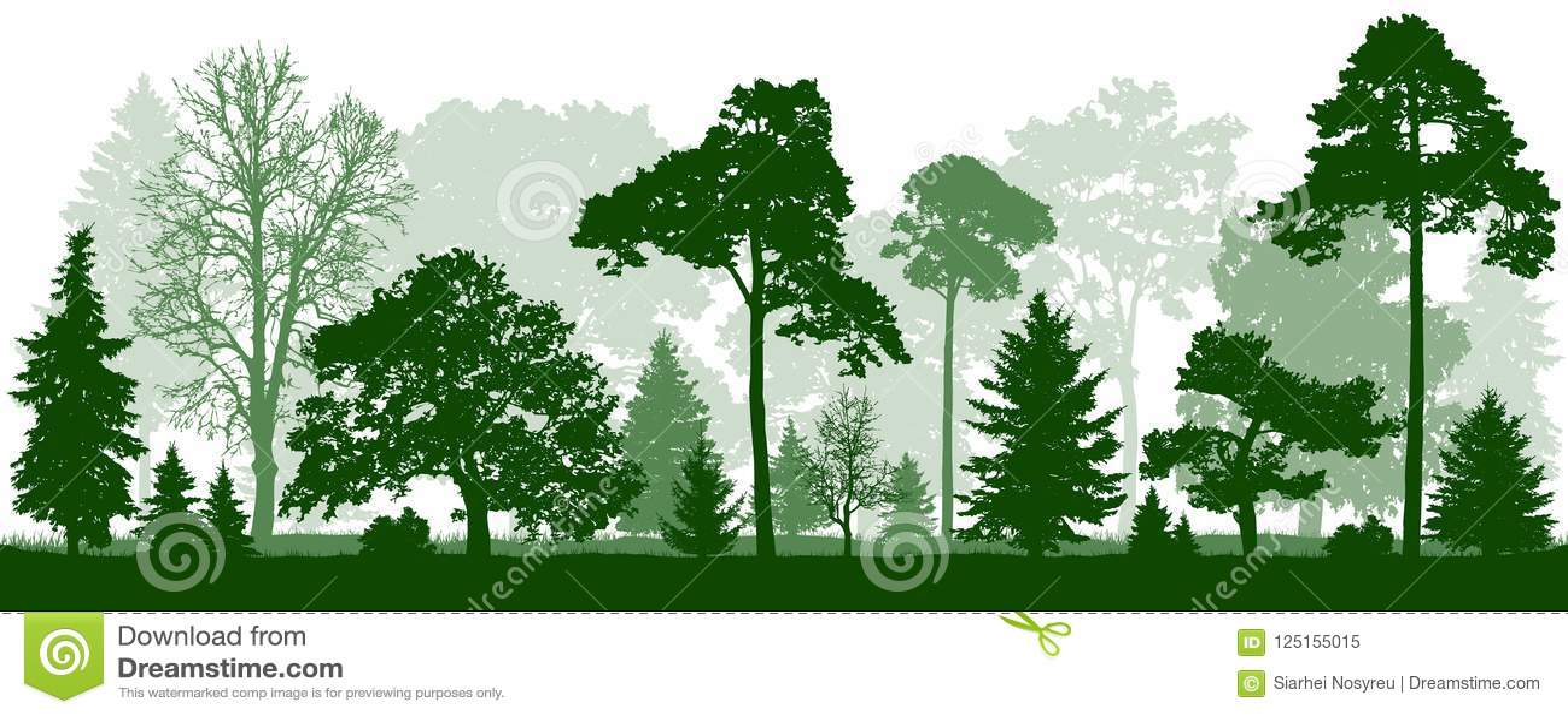 Silueta de los árboles del Forest Green Naturaleza, parque, paisaje