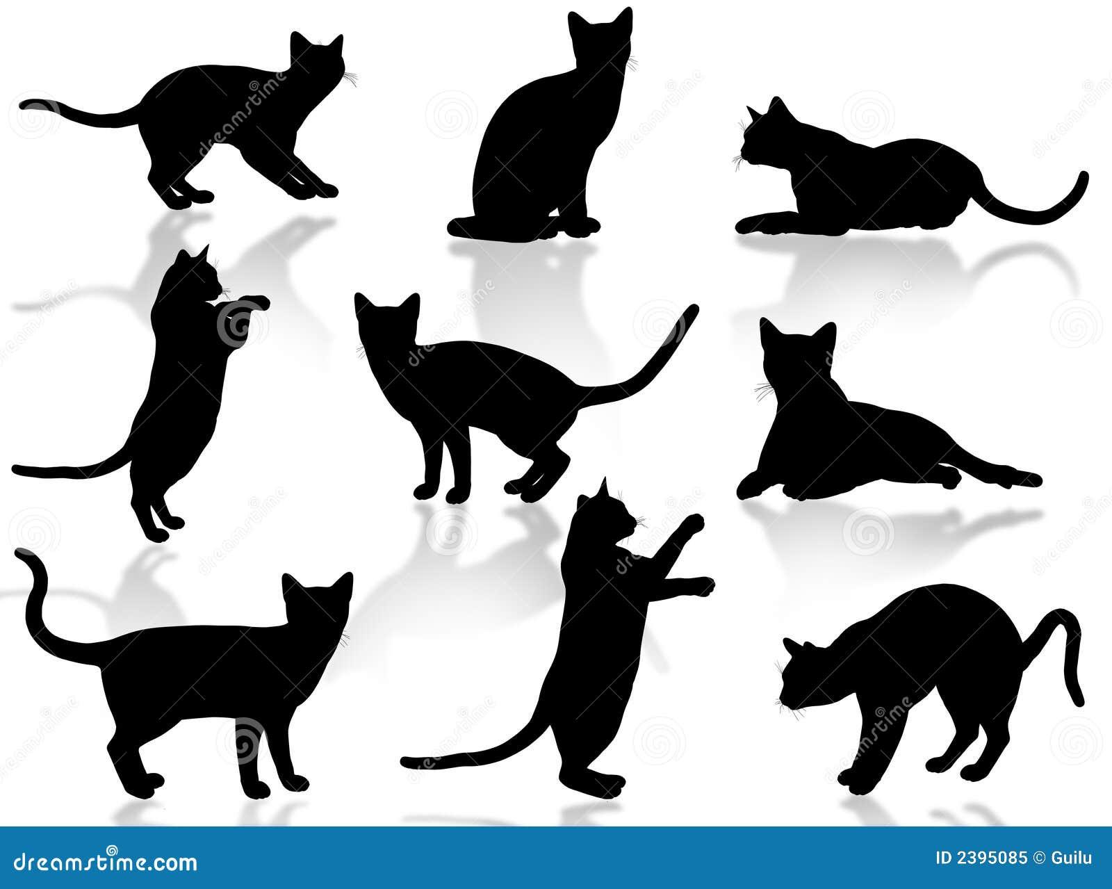 Silueta de los gatos