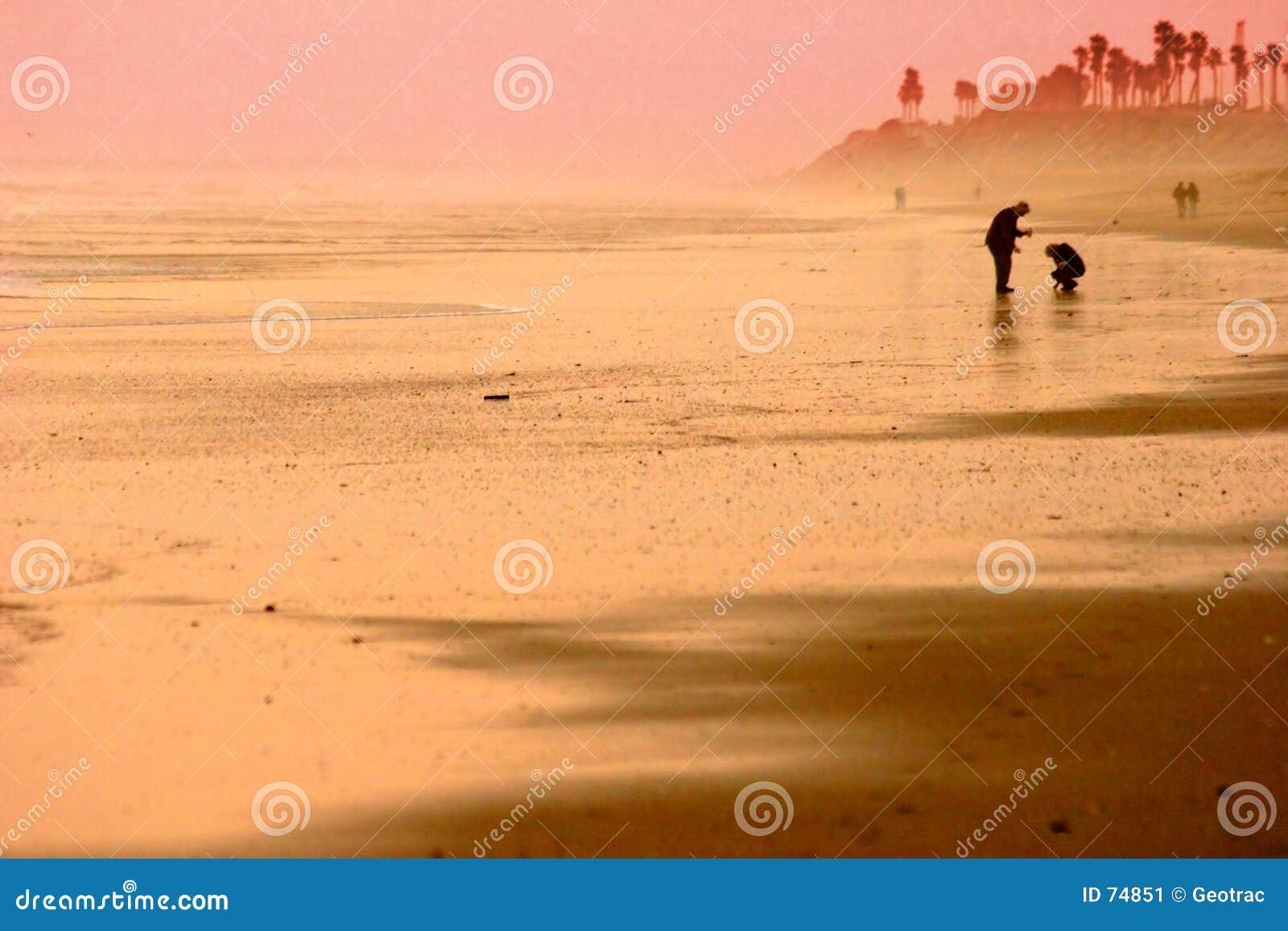Silueta de oro de la playa