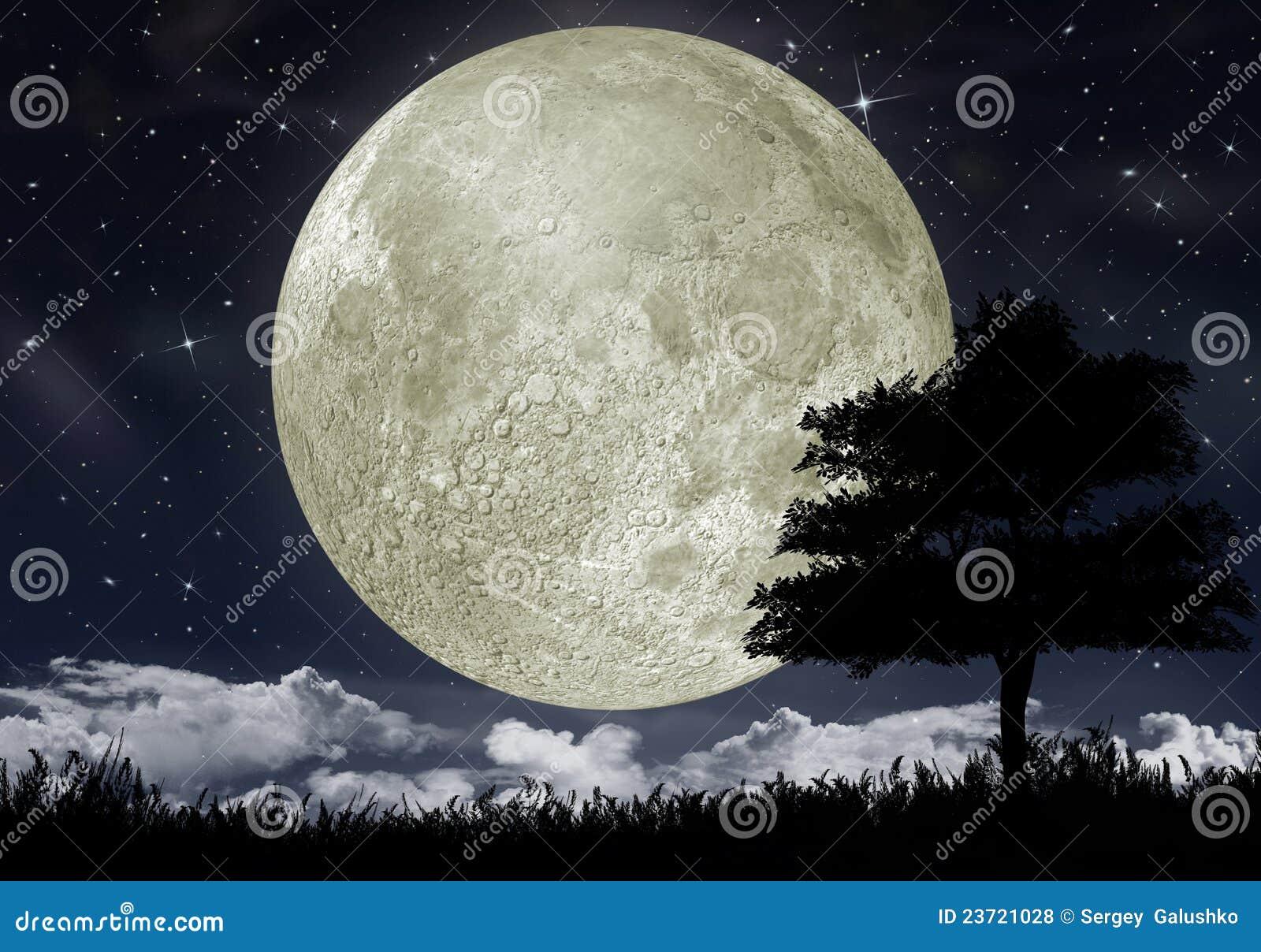 Silueta de un árbol contra la luna grande
