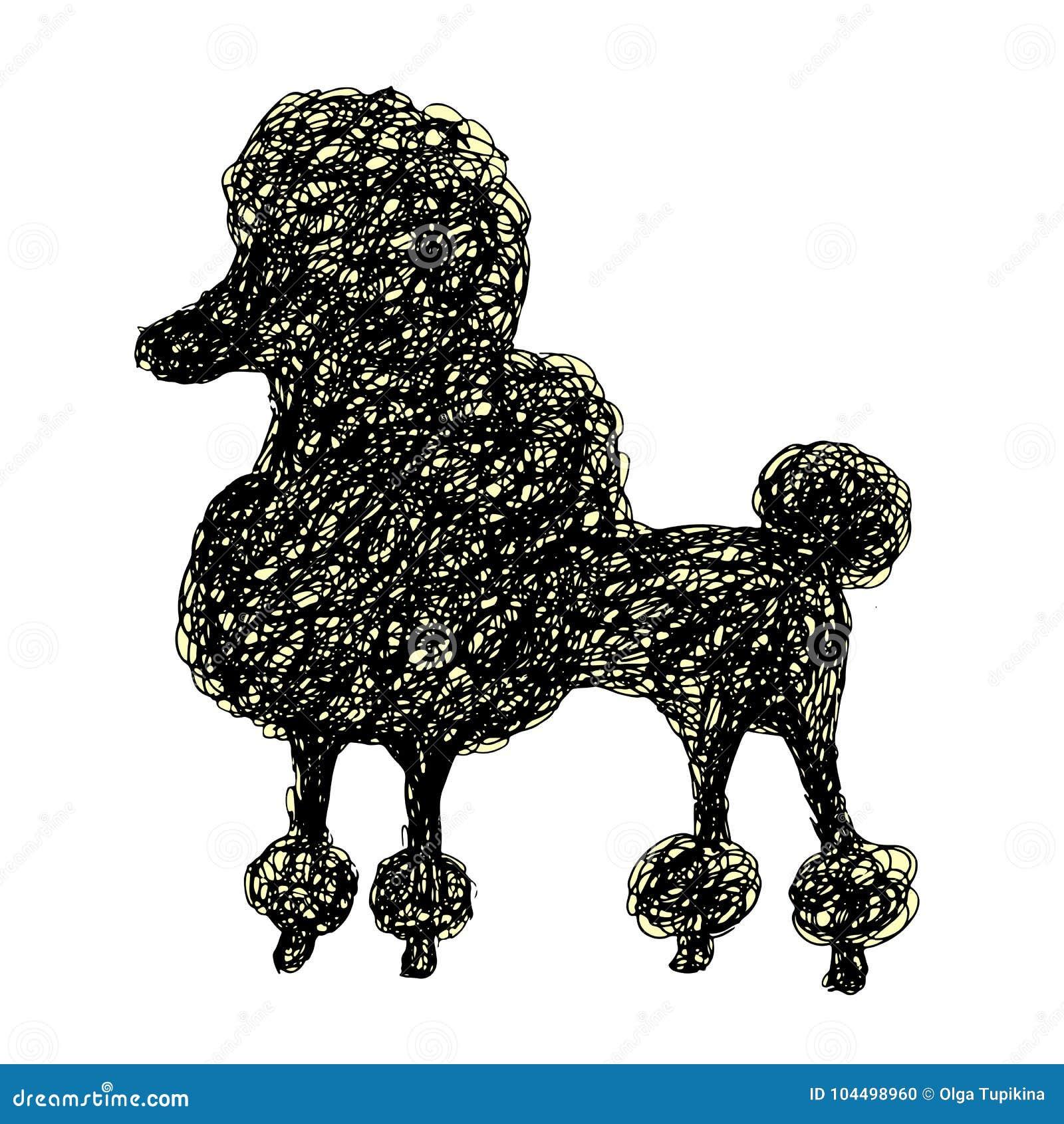 Silueta De Un Caniche Del Perro Estilo Del Garabato Perrito Del