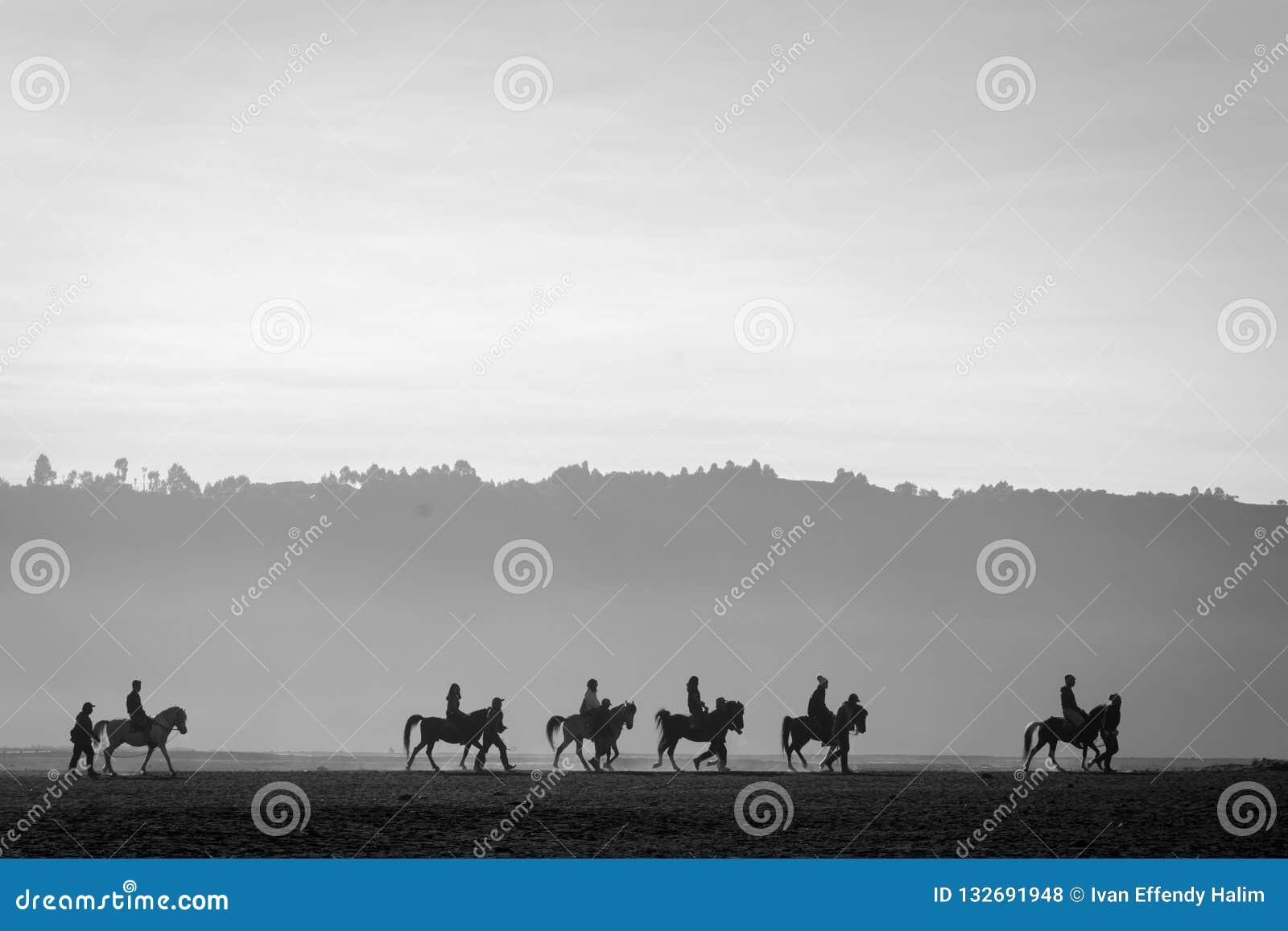 Silueta de un grupo de jinetes del caballo en Bromo