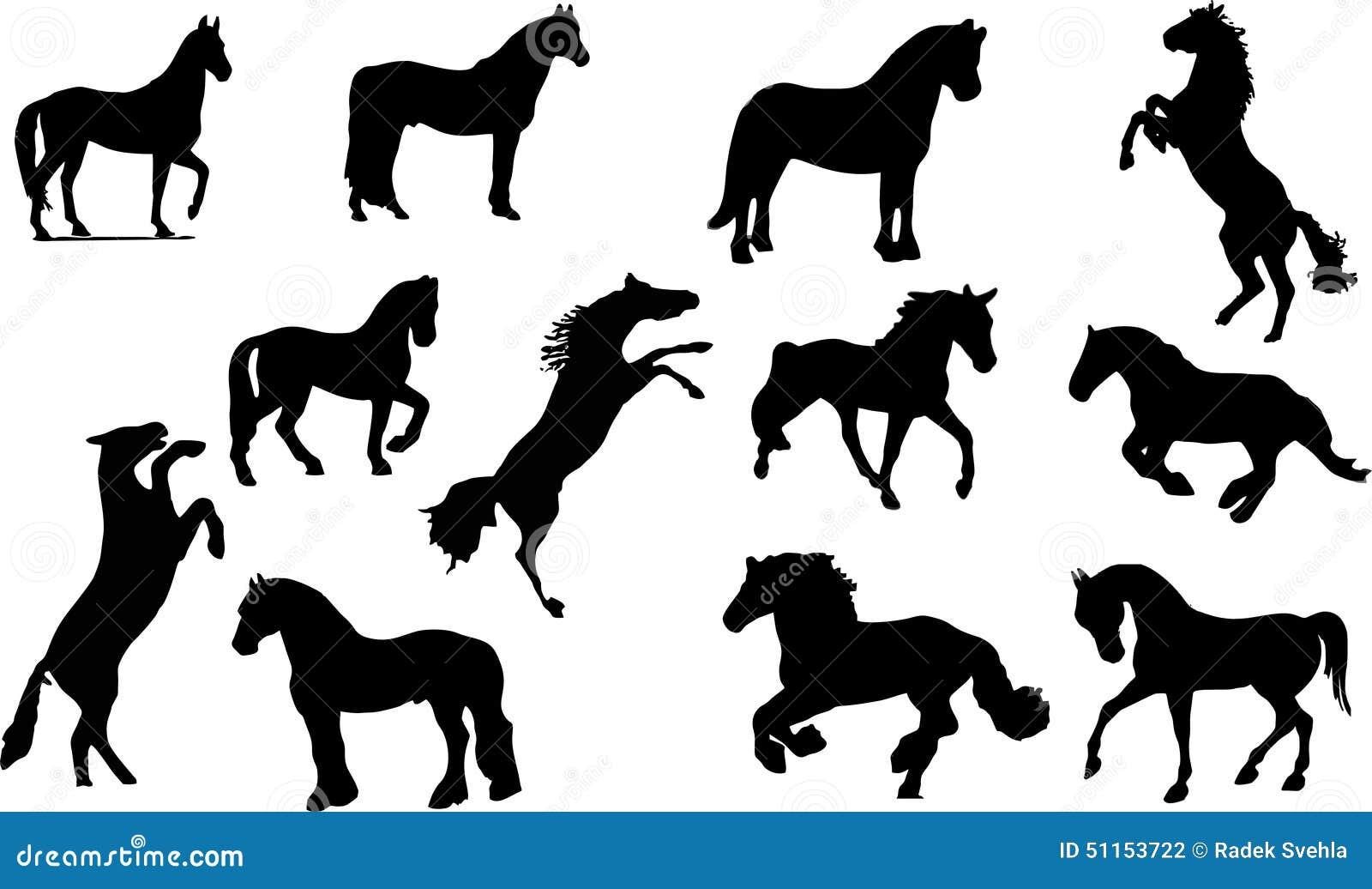 Silueta del caballo
