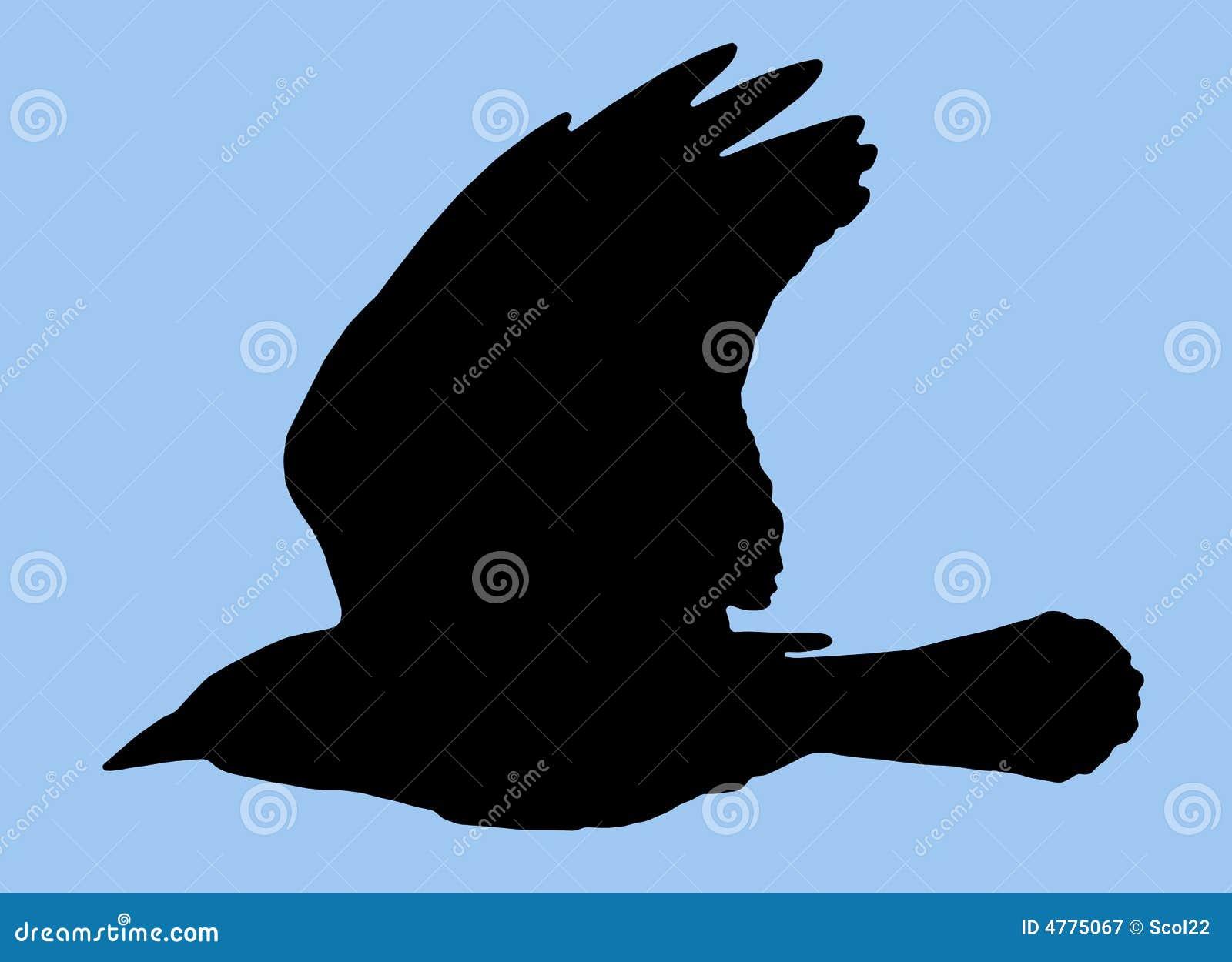 Silueta del pájaro