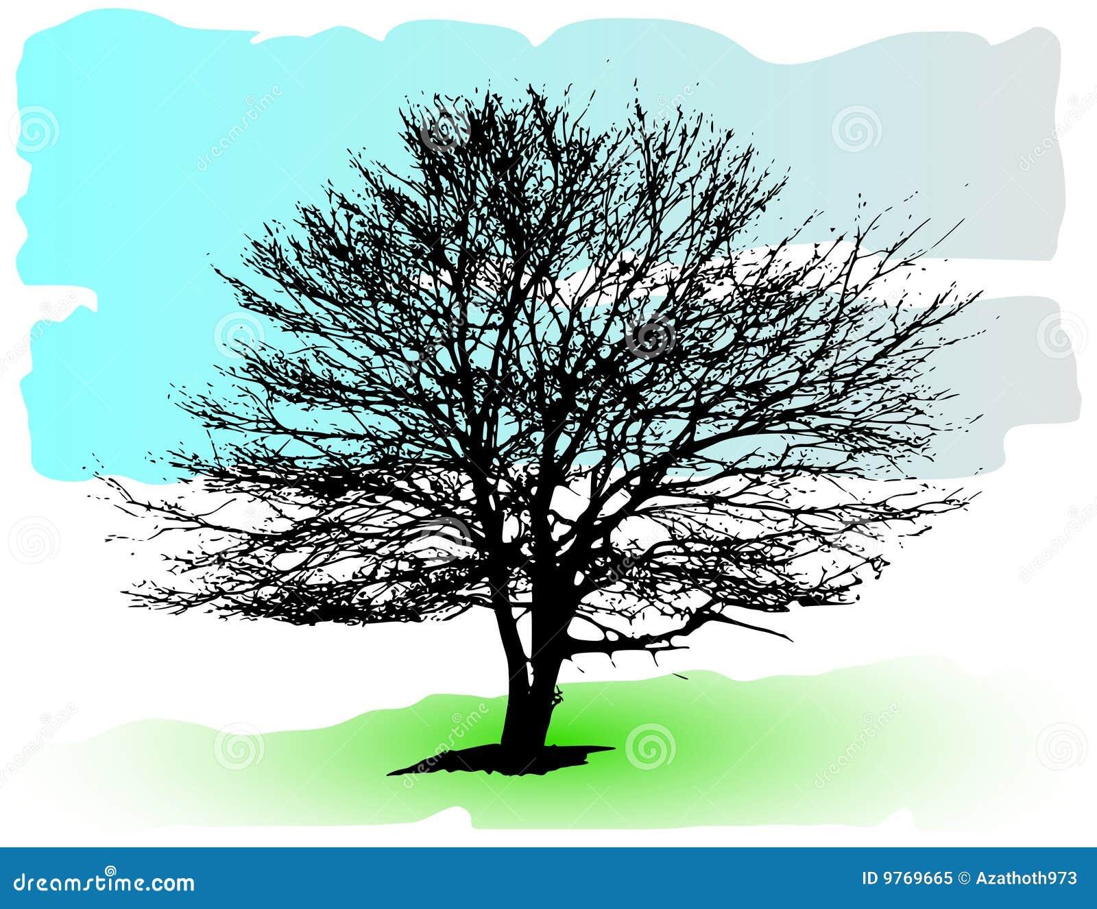 Silueta detallada del árbol del vector