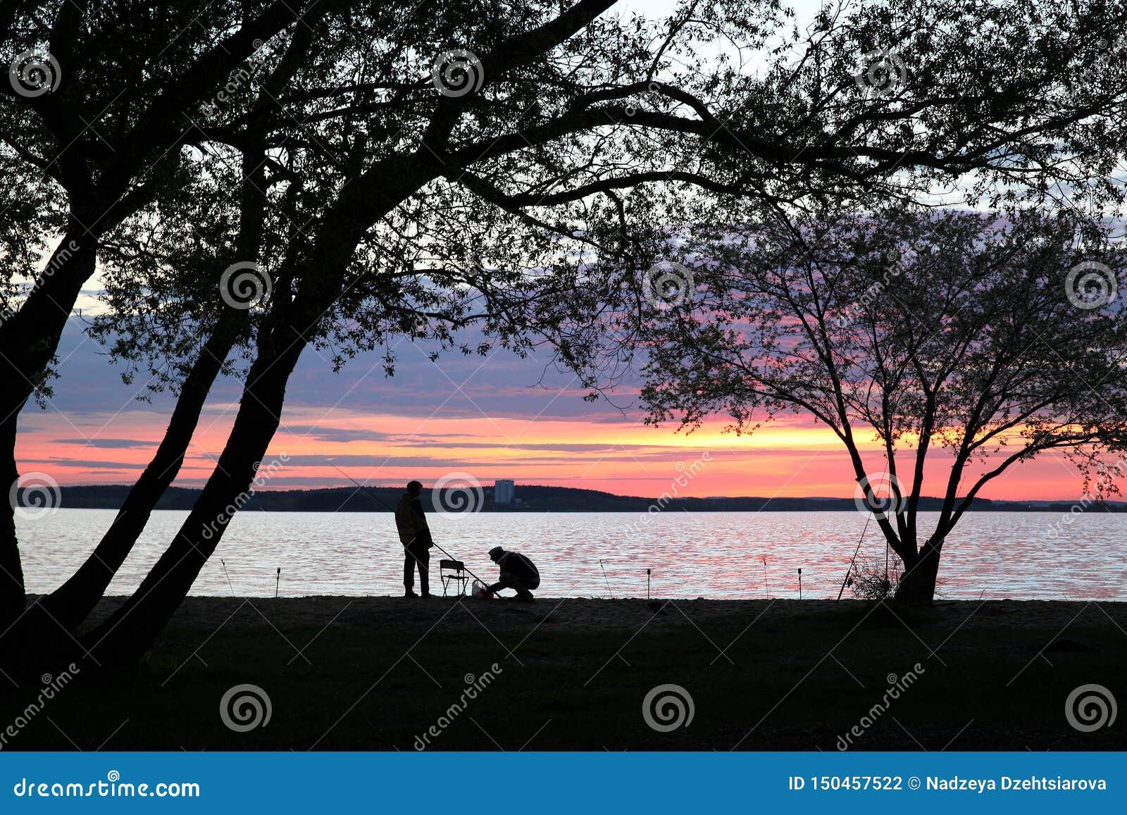 Siluetas de dos pescadores debajo de árboles grandes