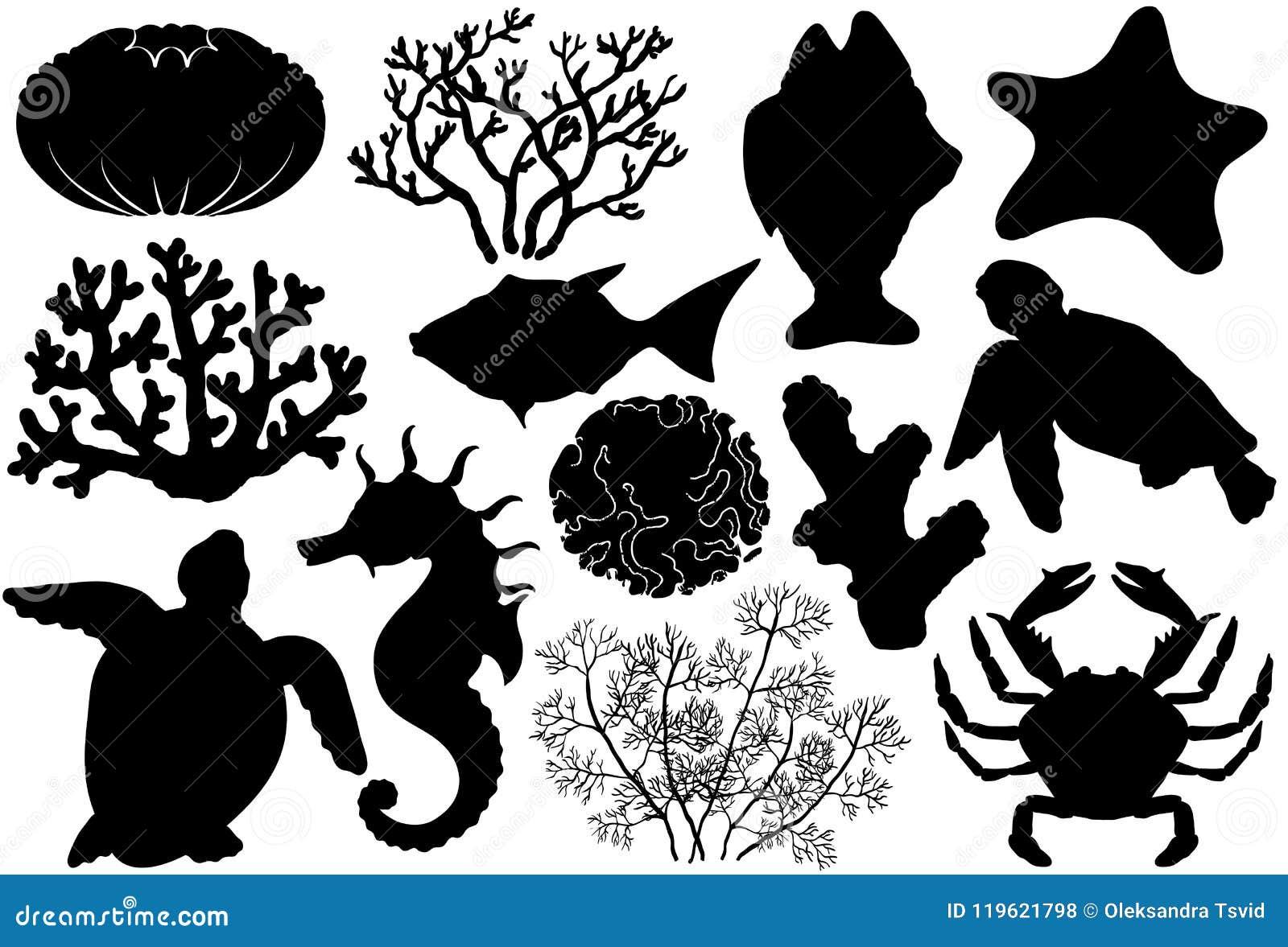 Siluetas De Los Organismos De La Vida Del Océano Cáscaras Pescados