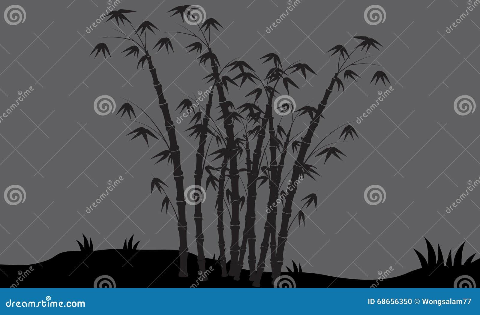 Siluetas del bambú en campos