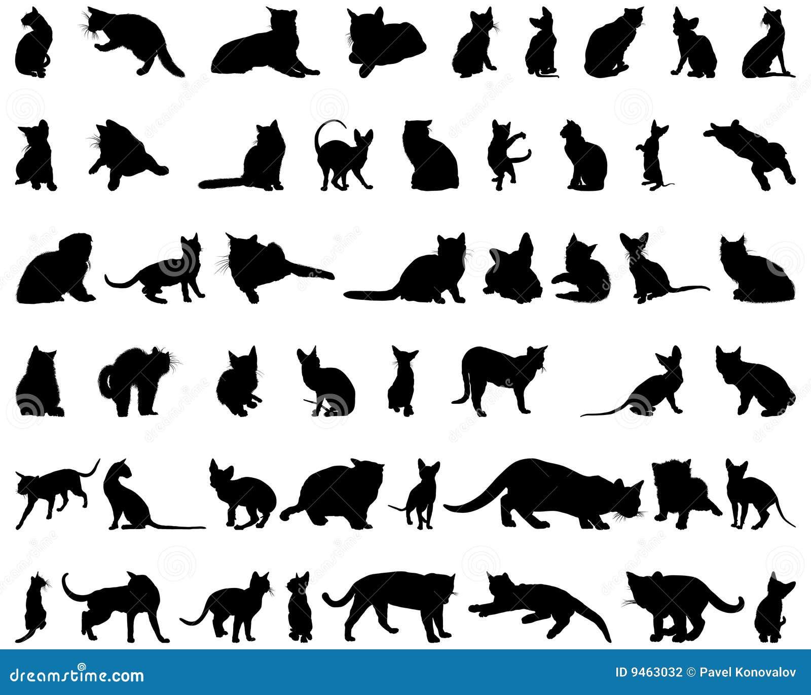 Siluetas del gato fijadas