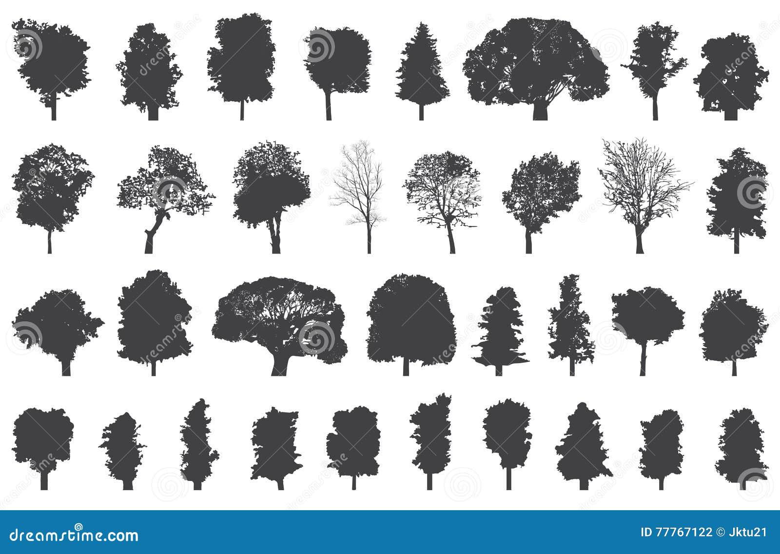 Siluetas del sistema del vector de los árboles