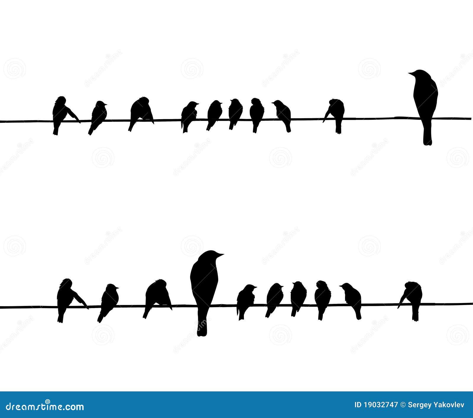 Siluetas del vector de los pájaros