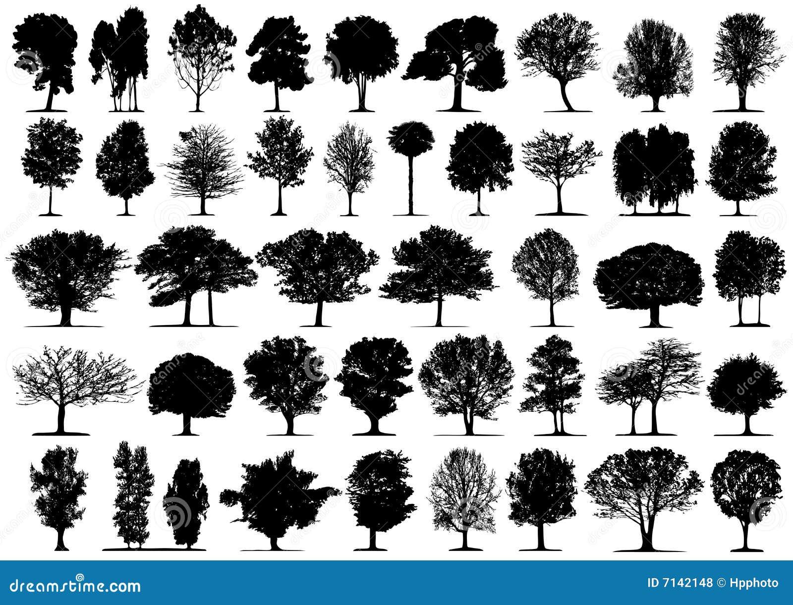 Siluetas negras del árbol