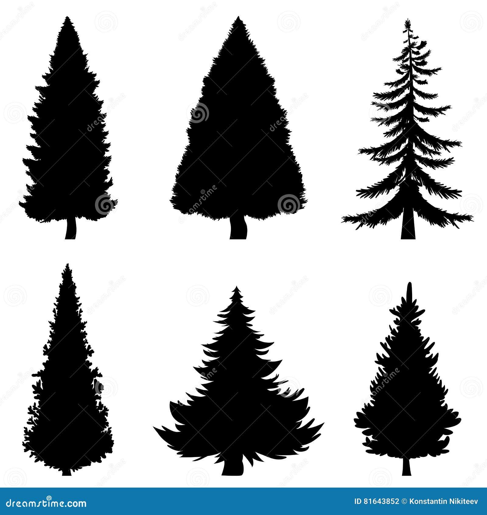 Siluetas negras del vector de 6 árboles de pino en el fondo blanco