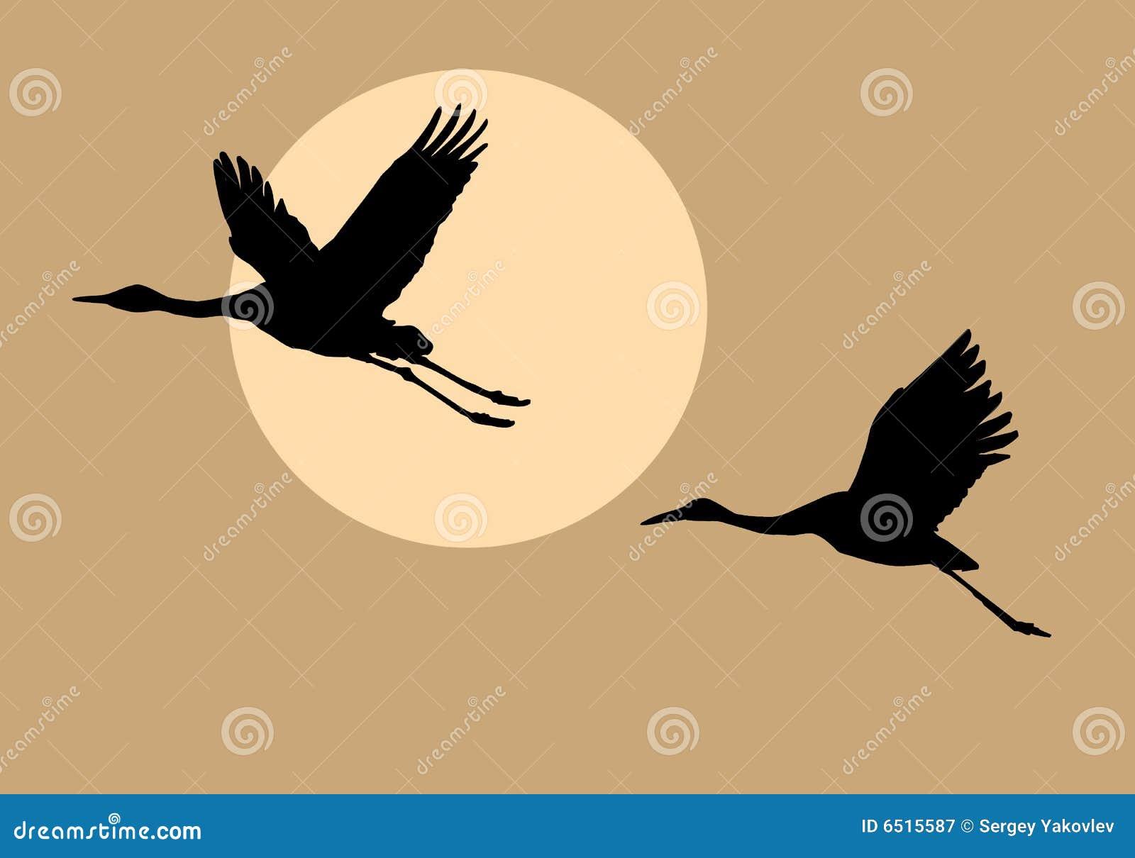 Siluetas que vuelan las grúas