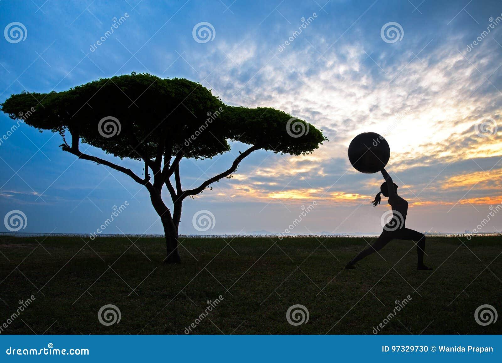 Siluetee a la mujer joven de la yoga con el árbol solo en el fondo de la puesta del sol