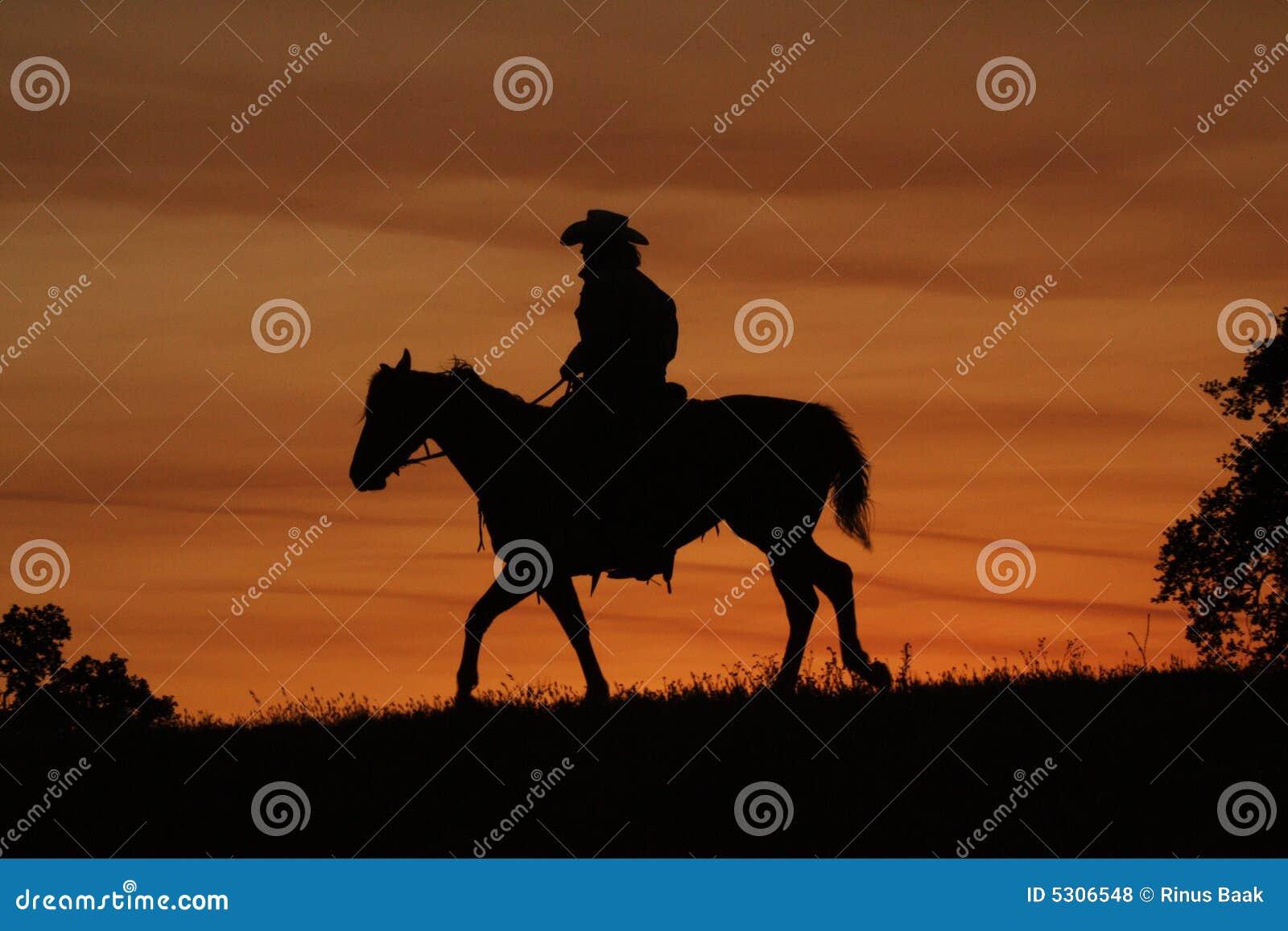 Download Siluetta del cowboy fotografia stock. Immagine di siluetta - 5306548