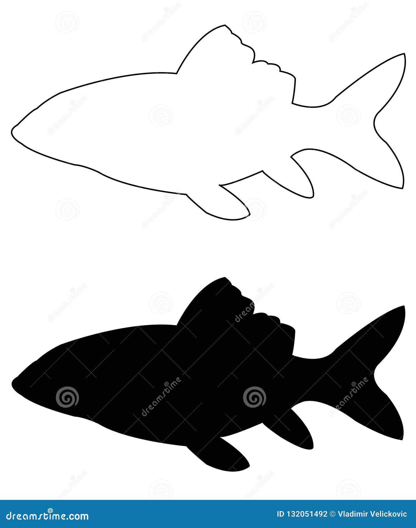 Siluetta del pesce - animali acquatici del craniate del branchia-cuscinetto che mancano degli arti con le cifre