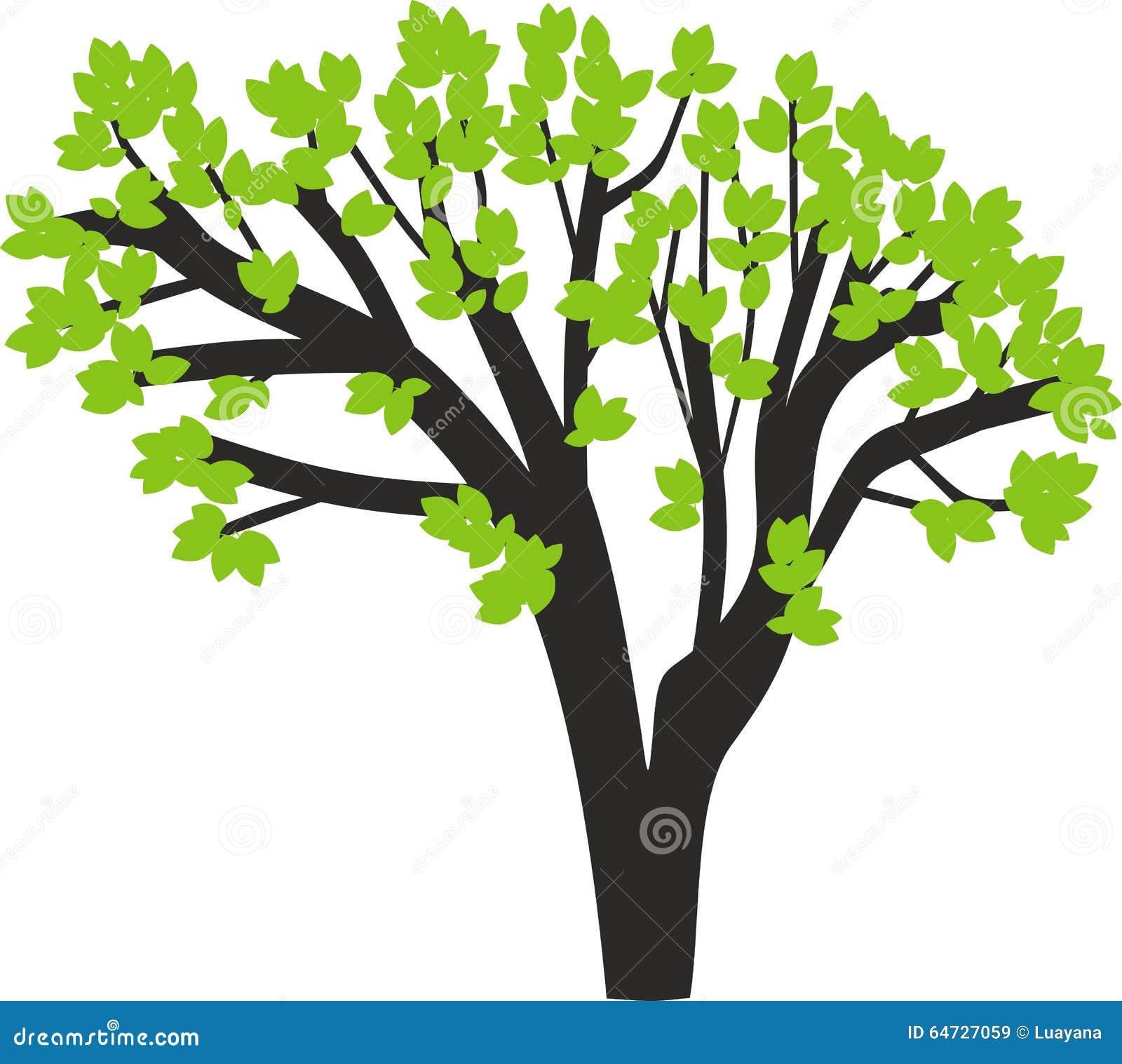 Siluetta dell albero con le foglie verdi