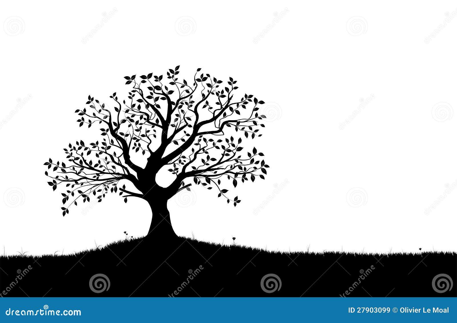 Siluetta dell albero, figura in bianco e nero di vettore