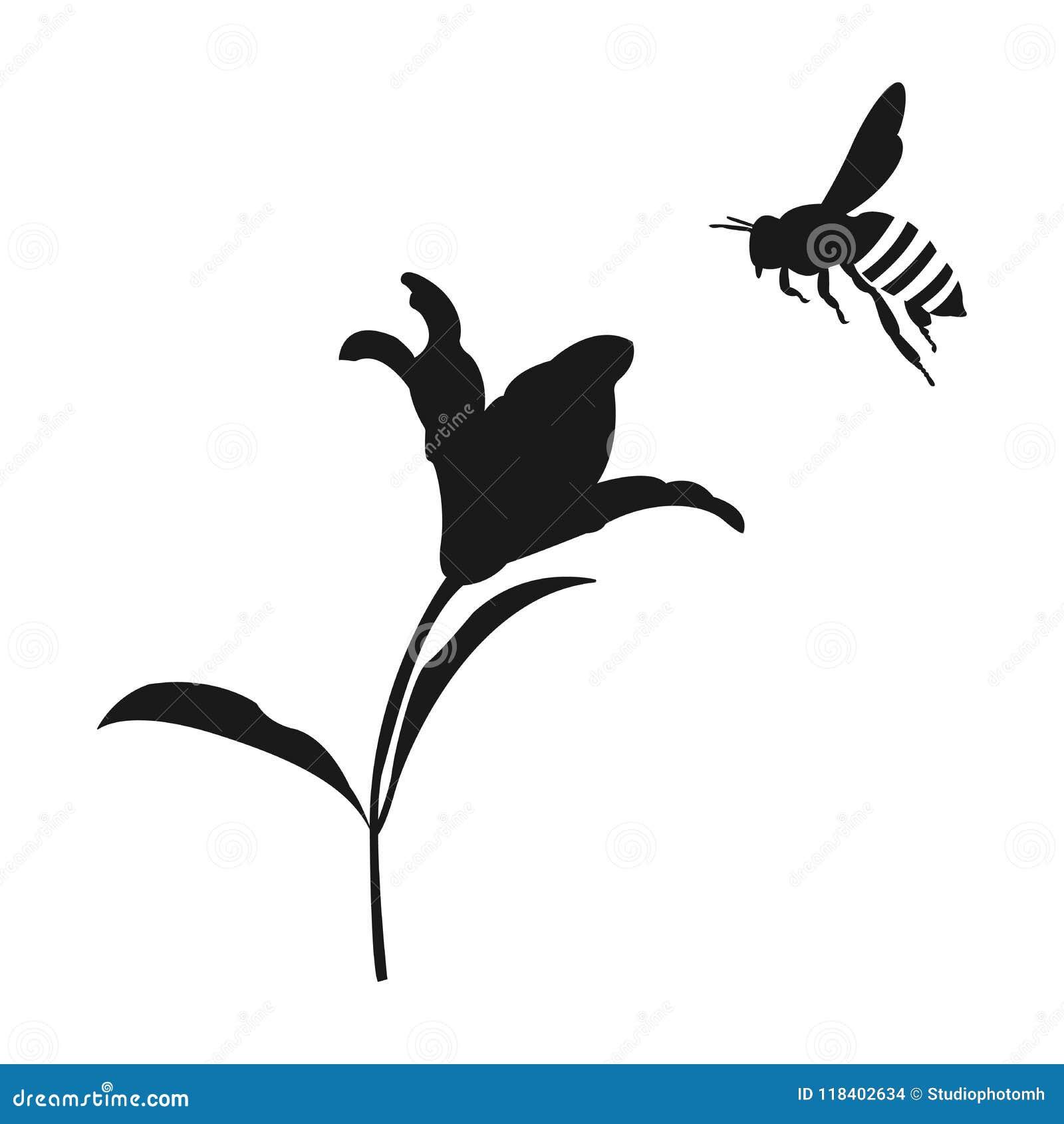 Siluetta dell ape del miele di volo Ape del miele e del fiore Innesta l icona
