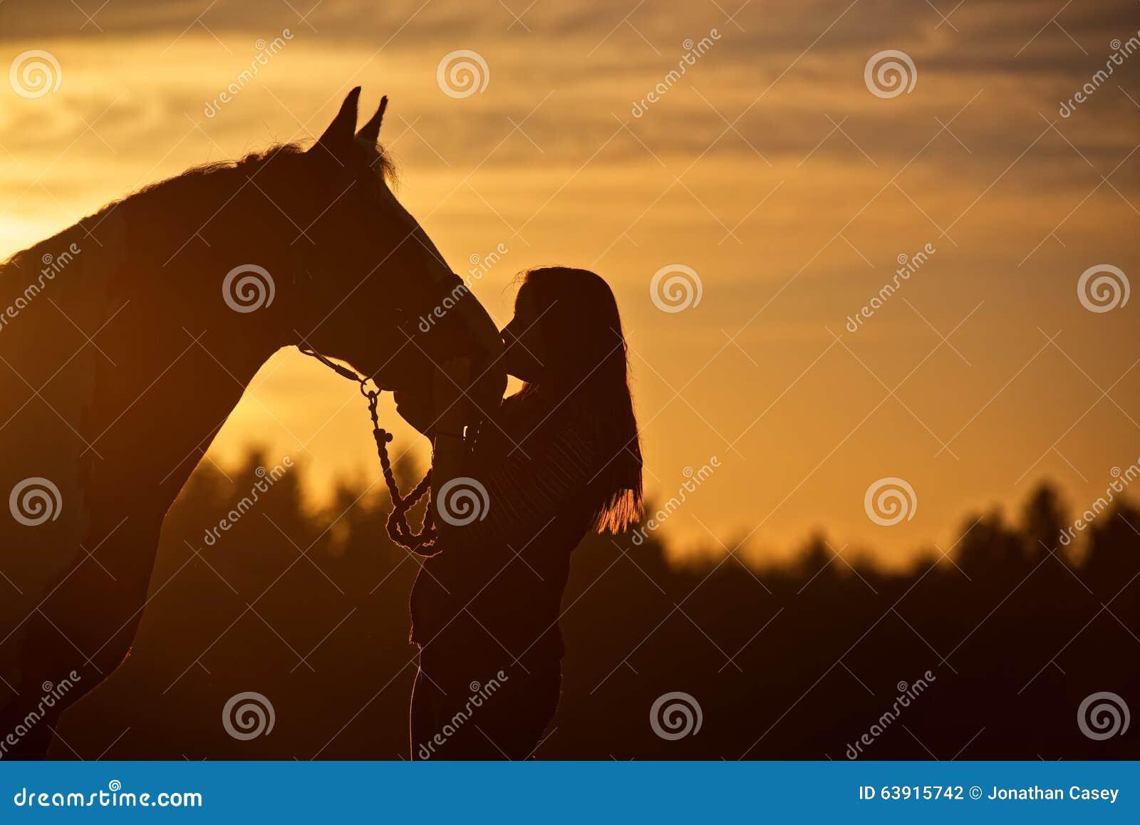 Siluetta della ragazza che bacia cavallo