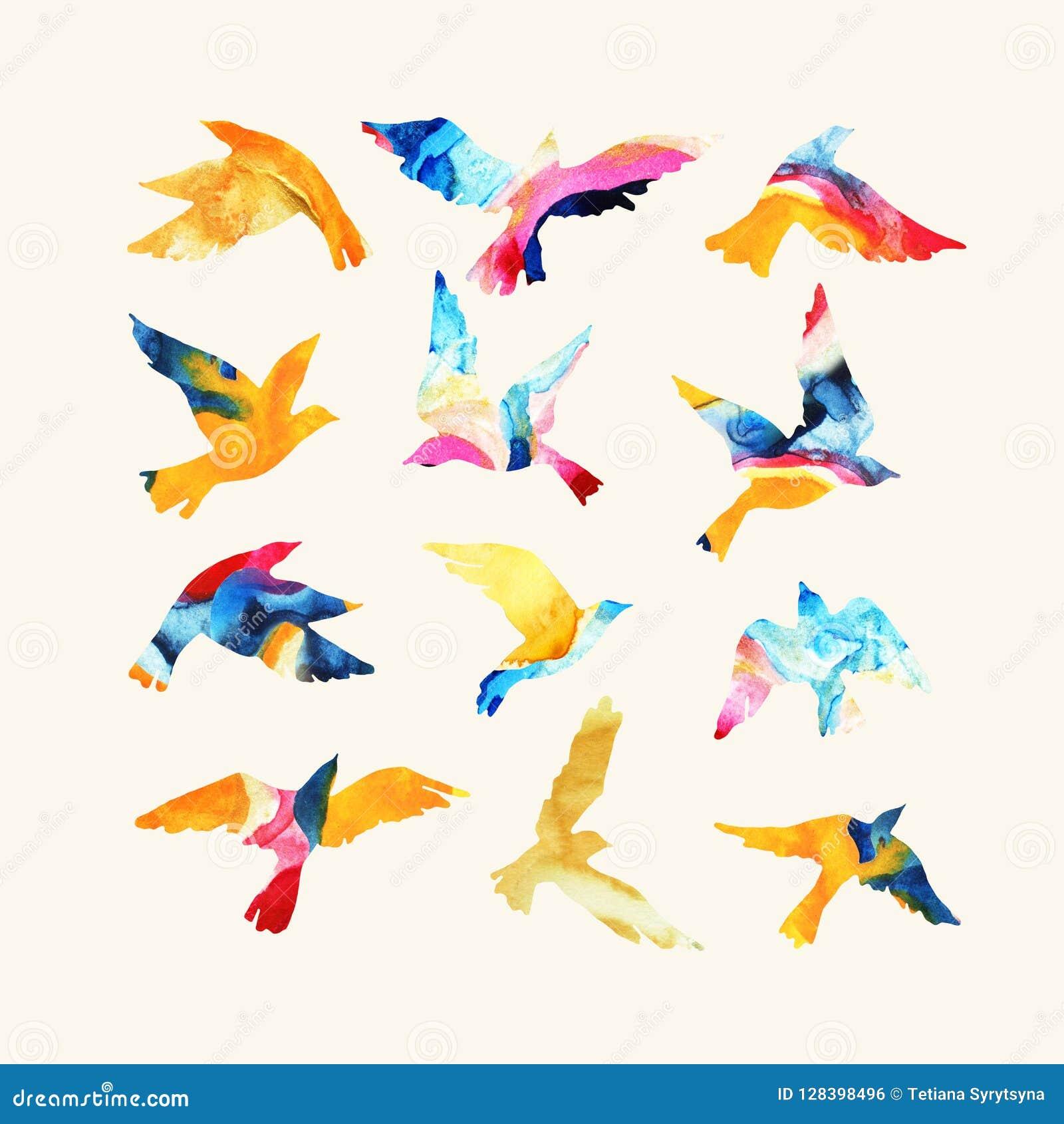 Siluette artistiche dell uccello di volo dell acquerello riempite di strutture mabling, colori luminosi fluidi, isolati su fondo