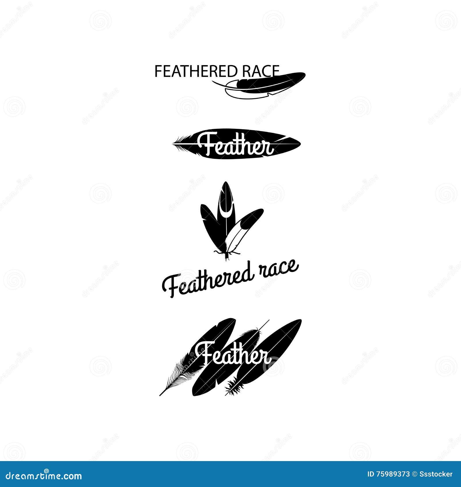Siluette nere delle piume per progettazione del logotype