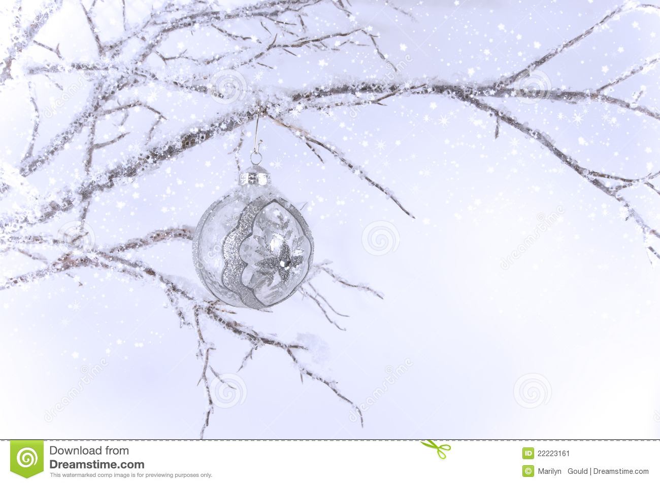 silver  u0026 clear christmas ornament on branch stock image