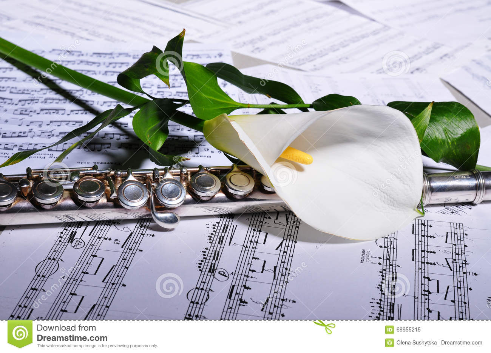 music flower download