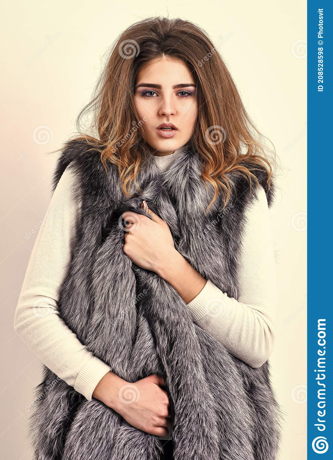 Silver Fur Vest Fashion Clothing Luxury Fur Accessory Girl Makeup Face Long Hairstyle Wear Fur Vest White Background Stock Photo Image Of Selling Luxury 208528598