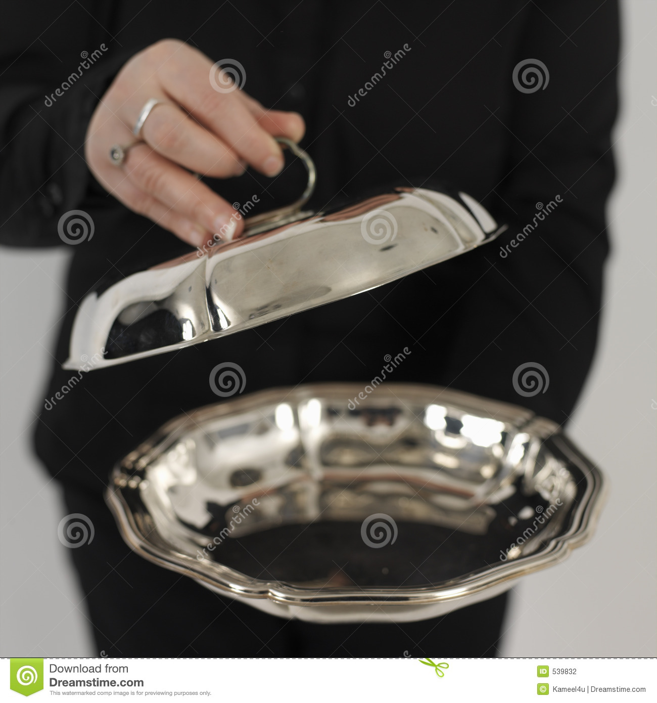 Silver Plate Stock Photography - Image: 539832